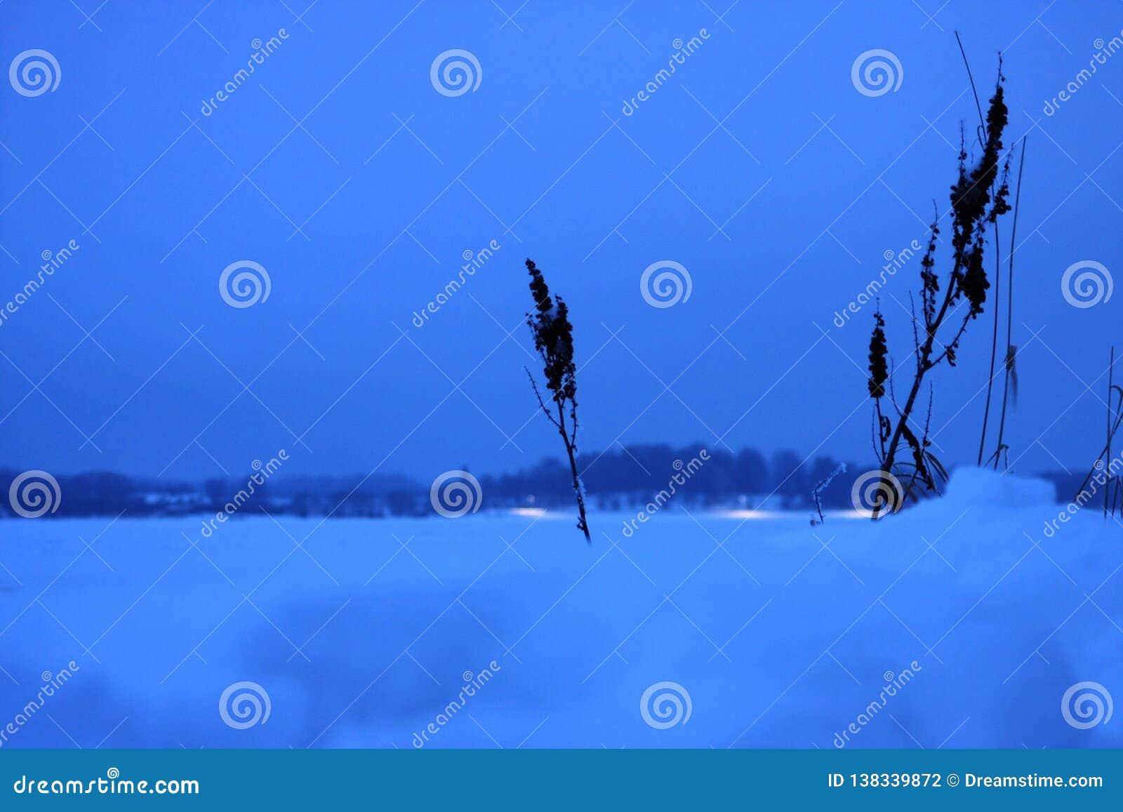 Fiume congelato bianco ed orizzonte