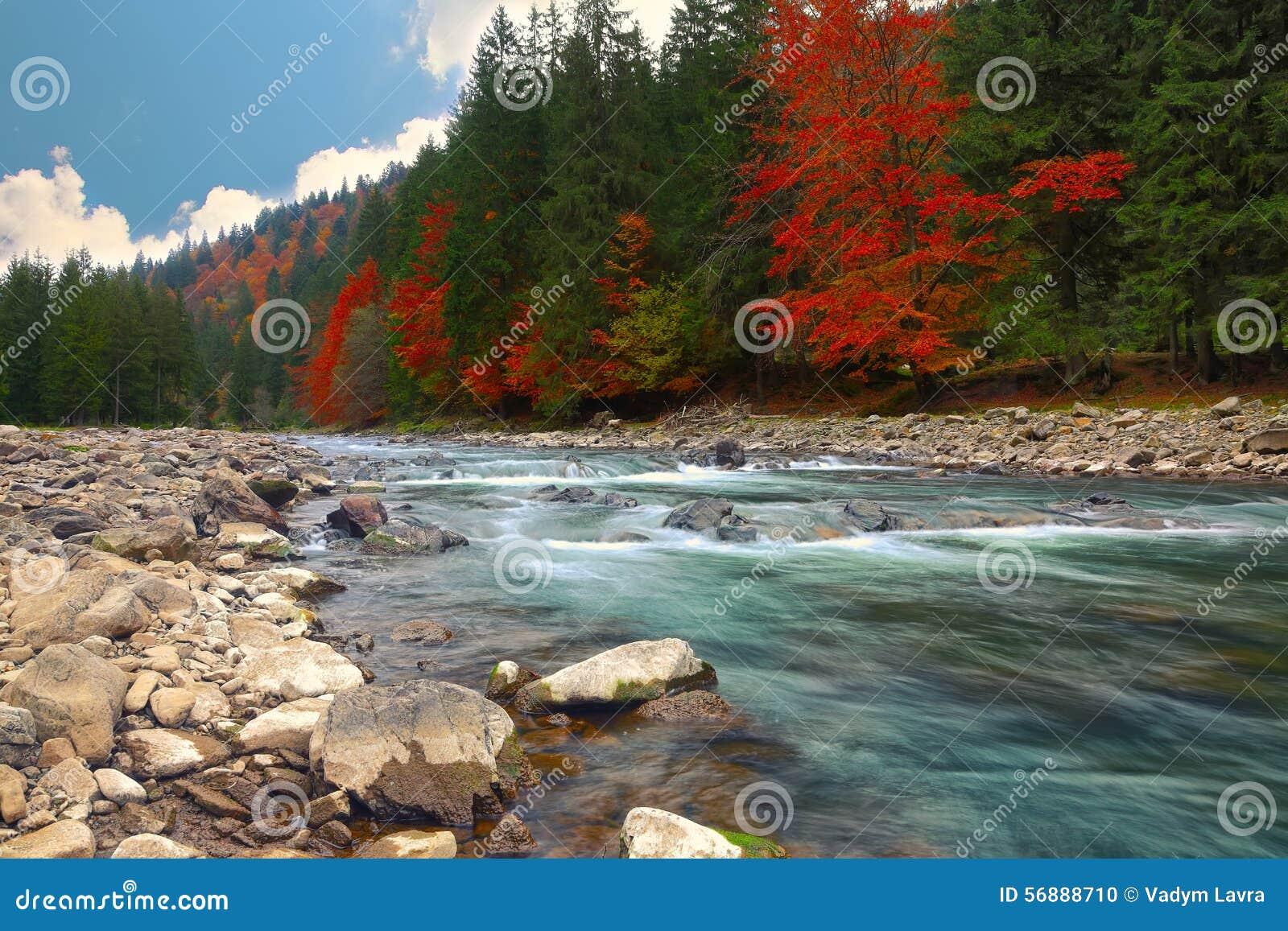 Fiume della montagna in autunno