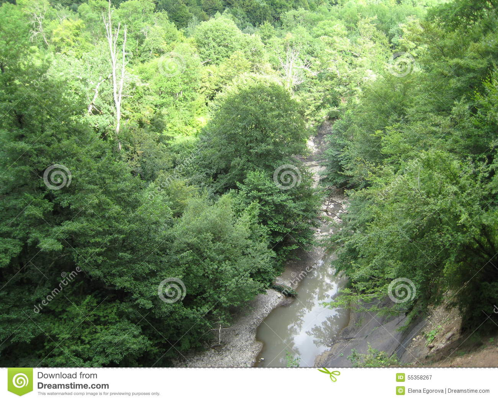 Fiume della montagna con le cascate
