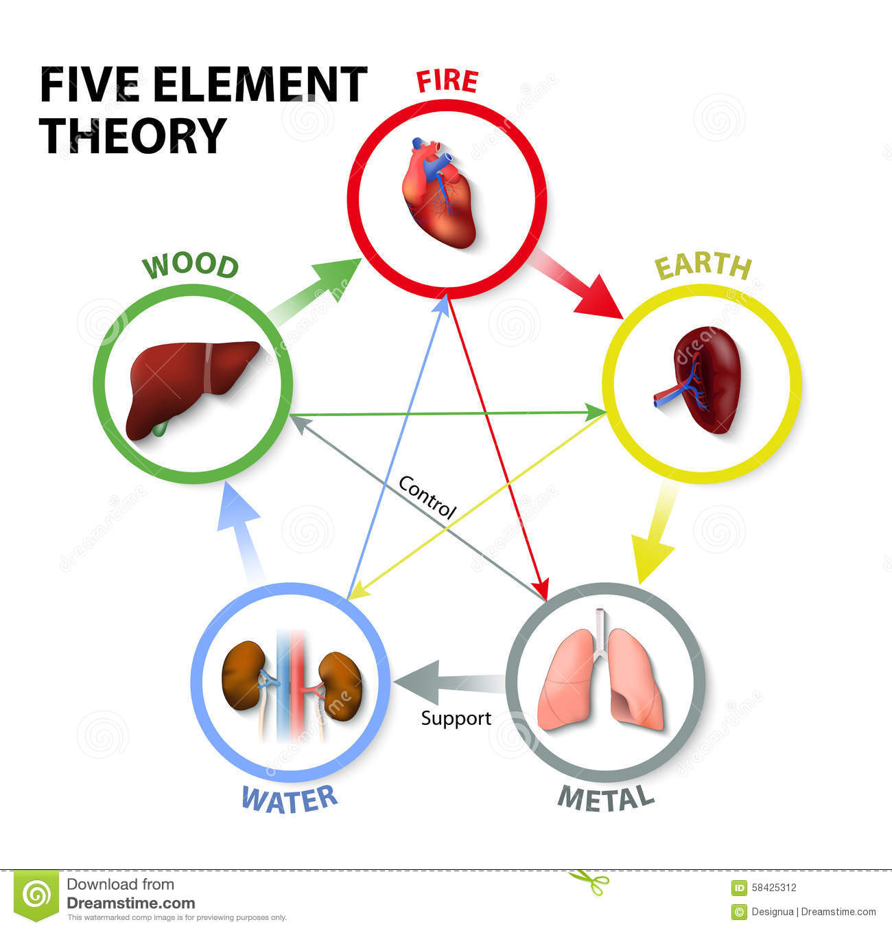 Five Element Theory Stock Vector Image 58425312