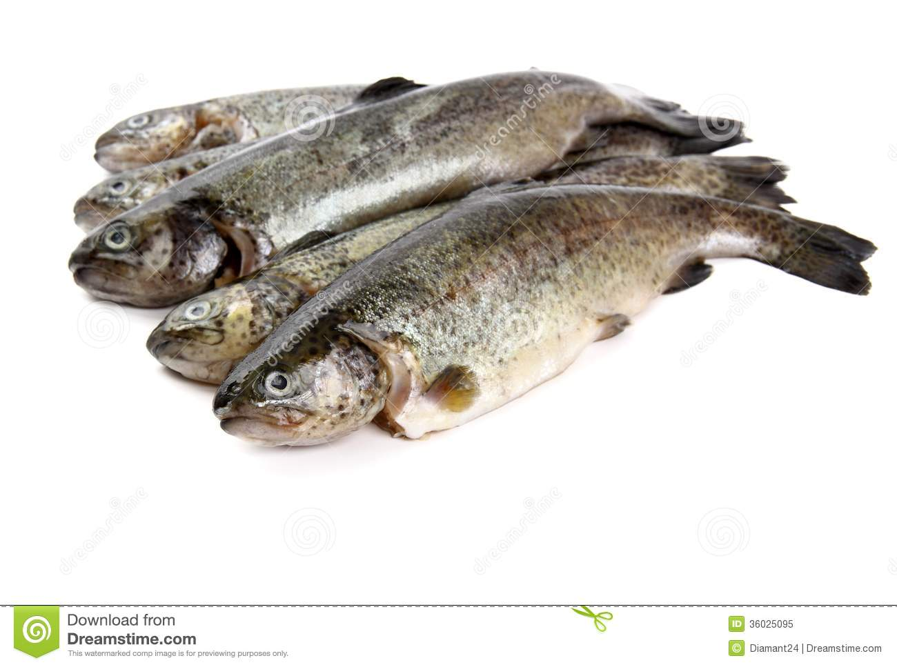 how to cook rainbow trout from frozen