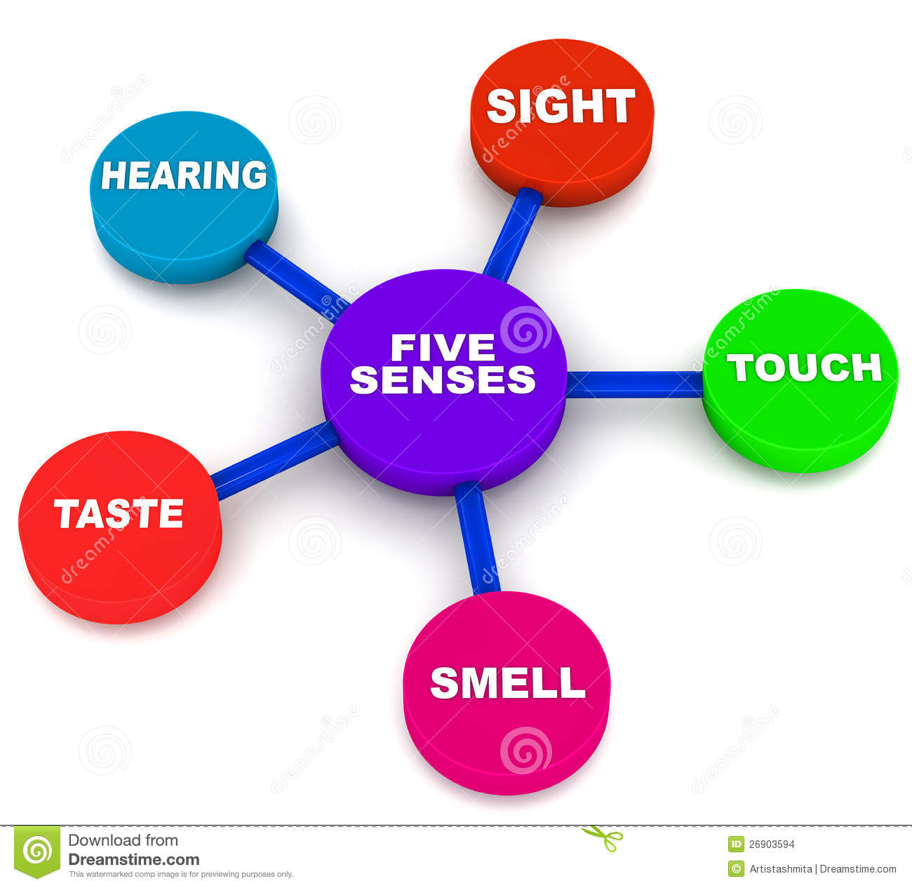 Five senses of human beings, sight touch hearing taste and smell.