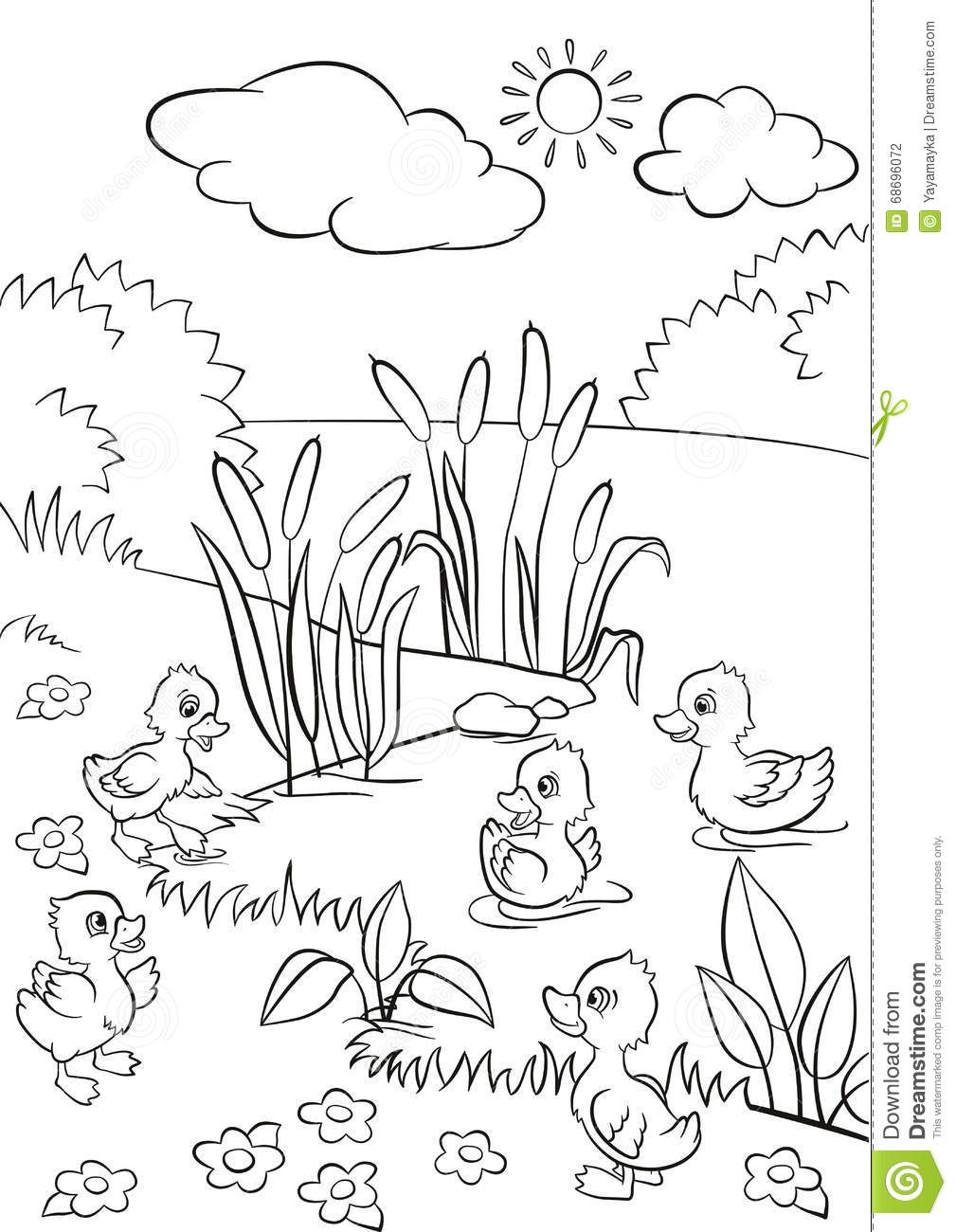 Coloring pages grass - Five Little Cute Ducklings Swim On The Lake And Stand On The Grass
