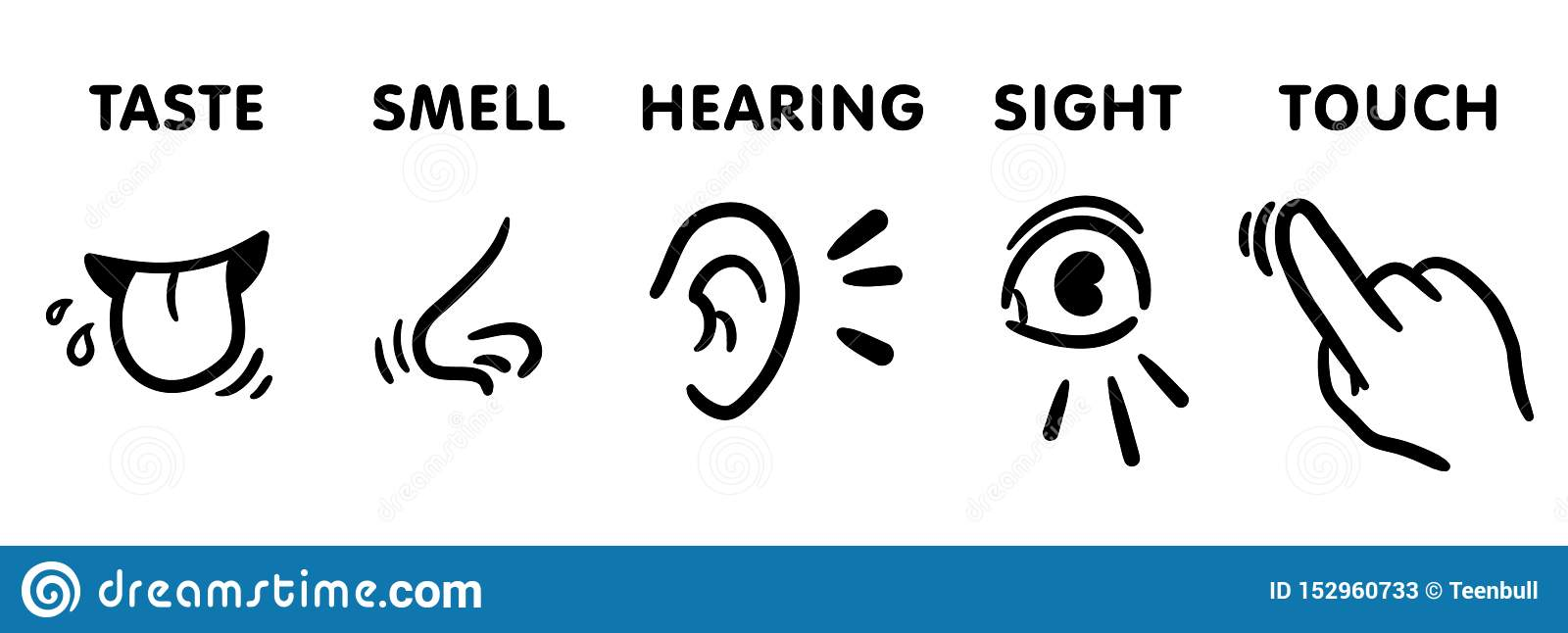 Five senses icon set, funny hand-drawn educational vector illustrations for kids: 5 feelings of human