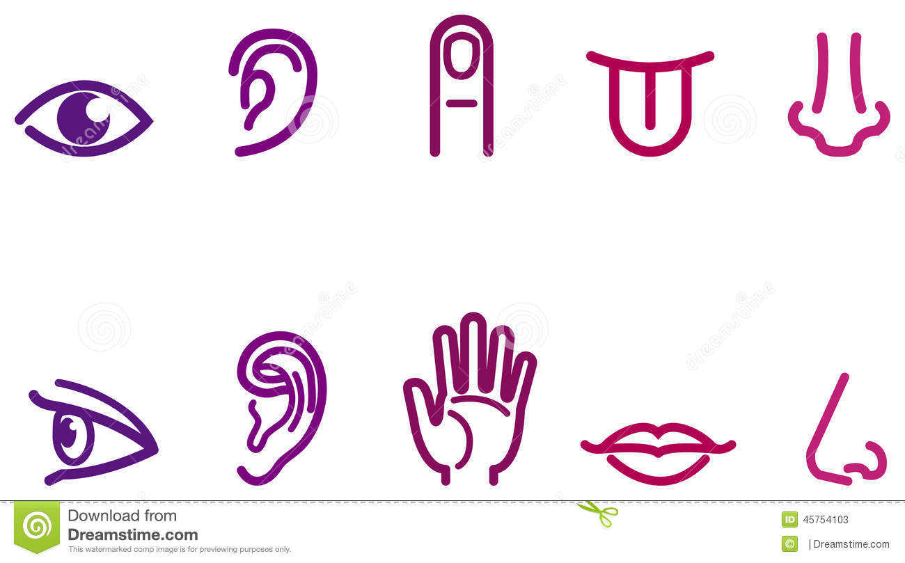 Five Senses Icons Stock Illustration - Image: 45754103