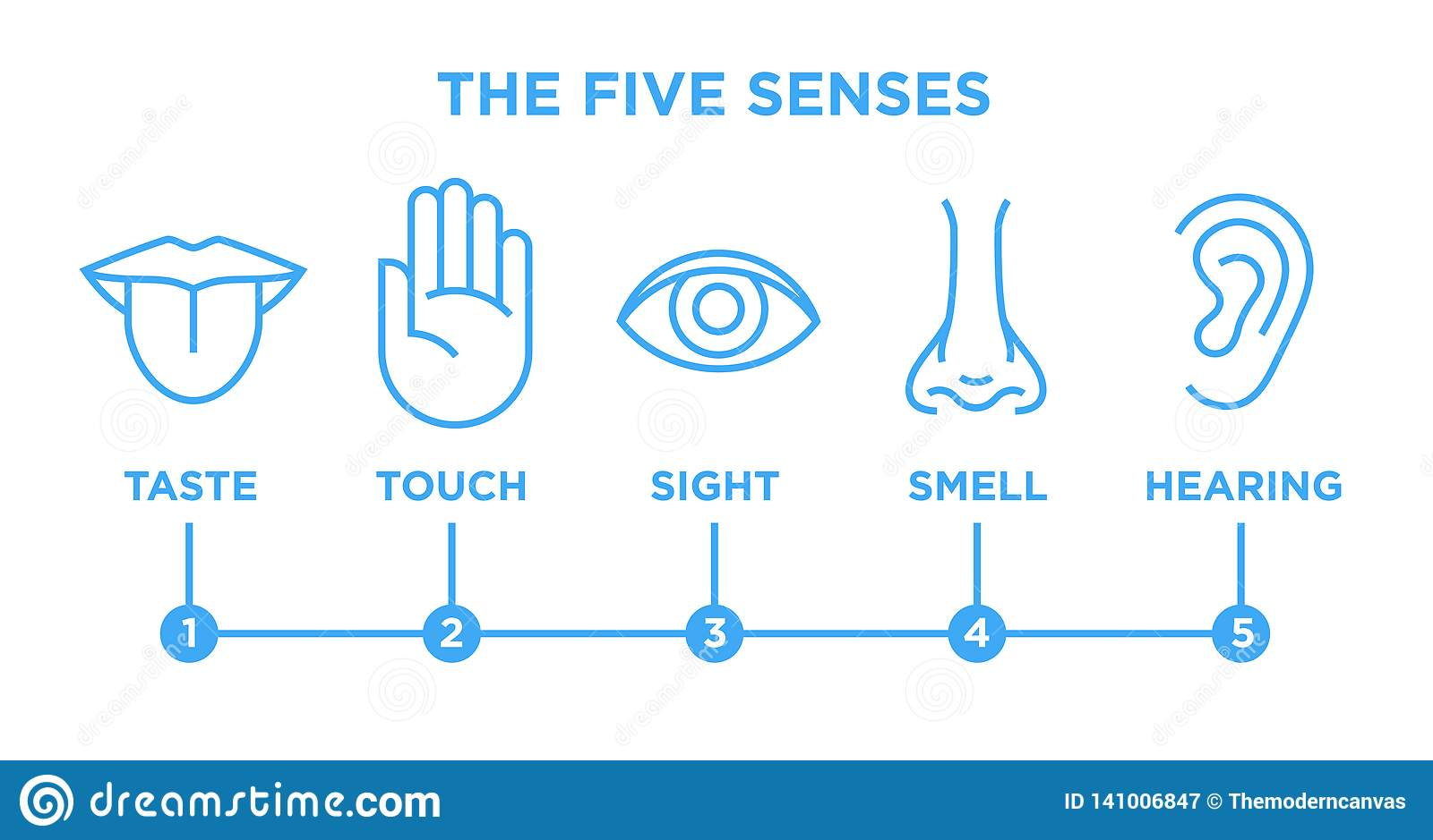 The five senses infographic vector line icons set