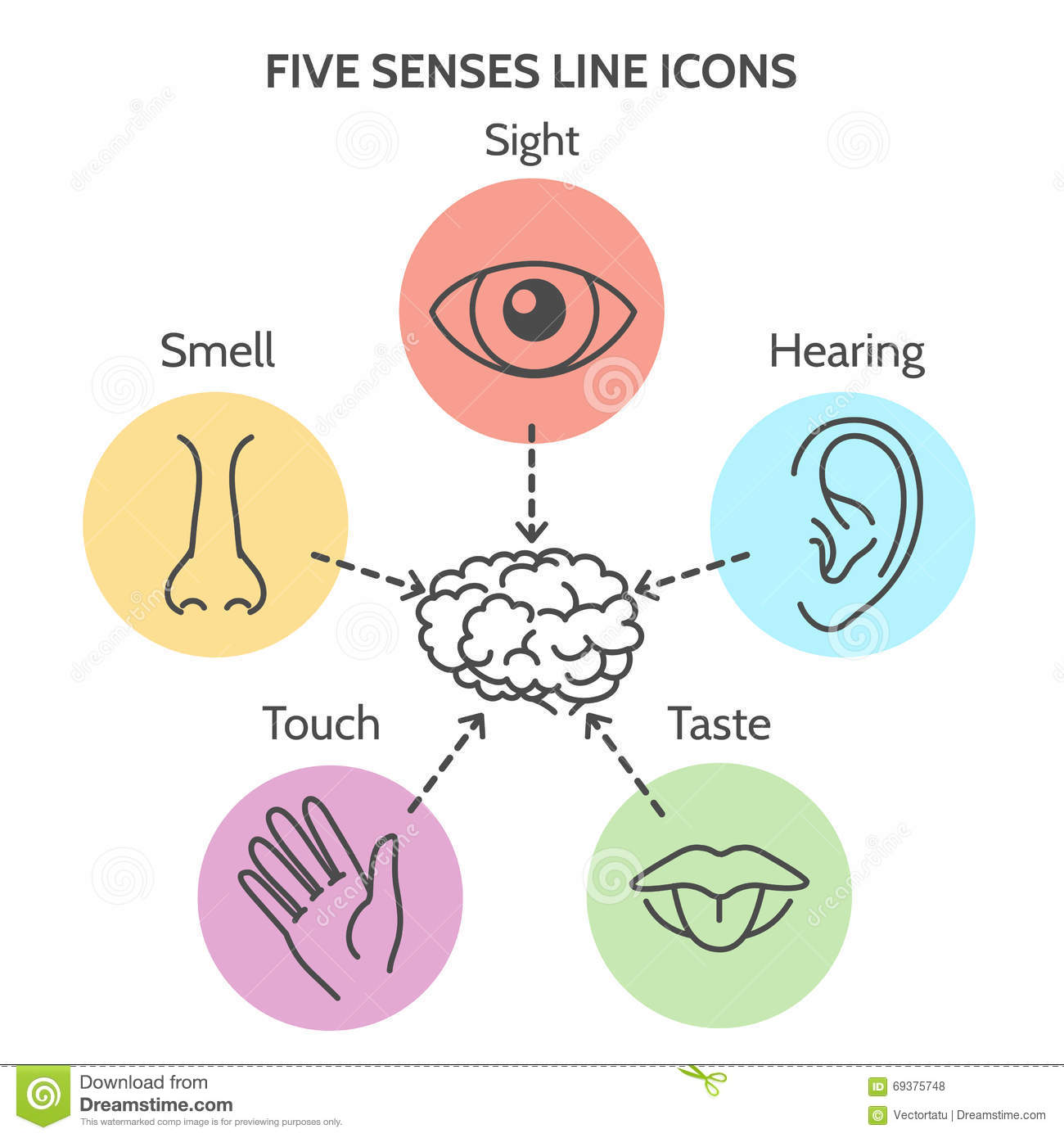 Count Pictures Up To Five in addition Body Parts Matching in addition Kids Activity Worksheets Feeling likewise D D Beb C C D F Dae E as well Senses Printable. on drawing 5 senses worksheet