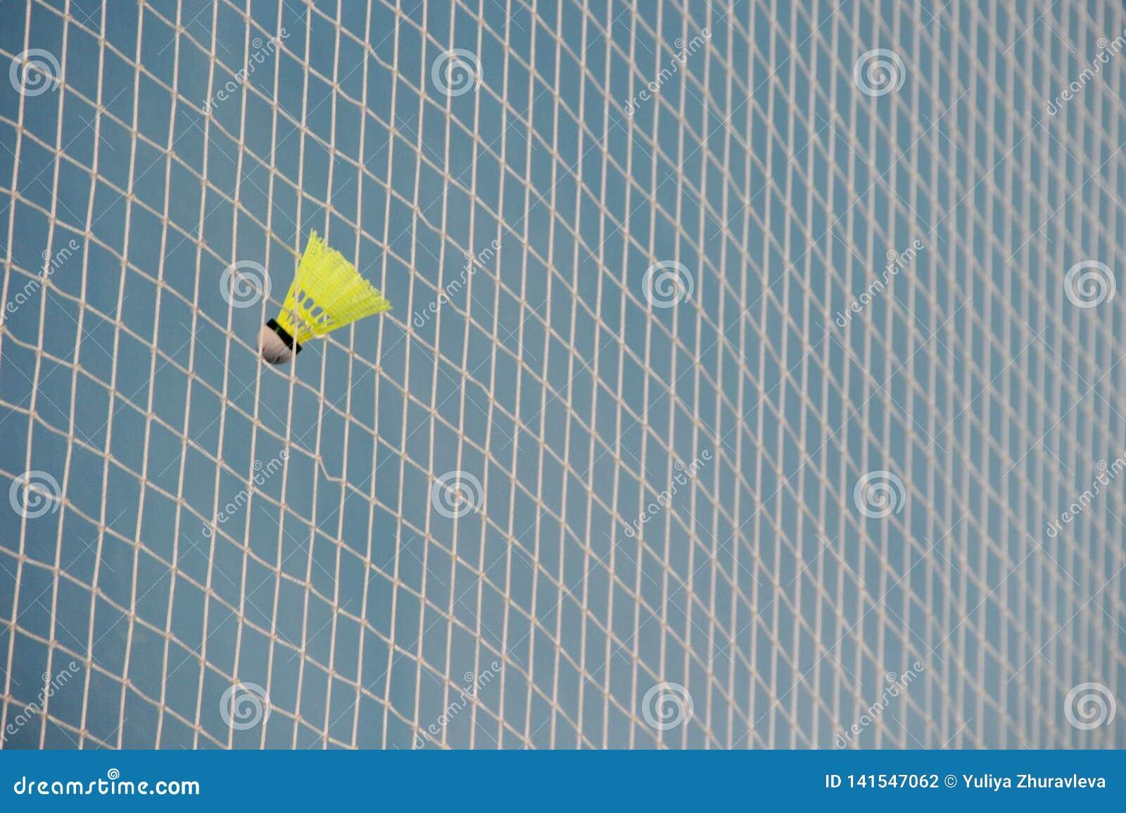 Fjäderboll i en rasterbadminton