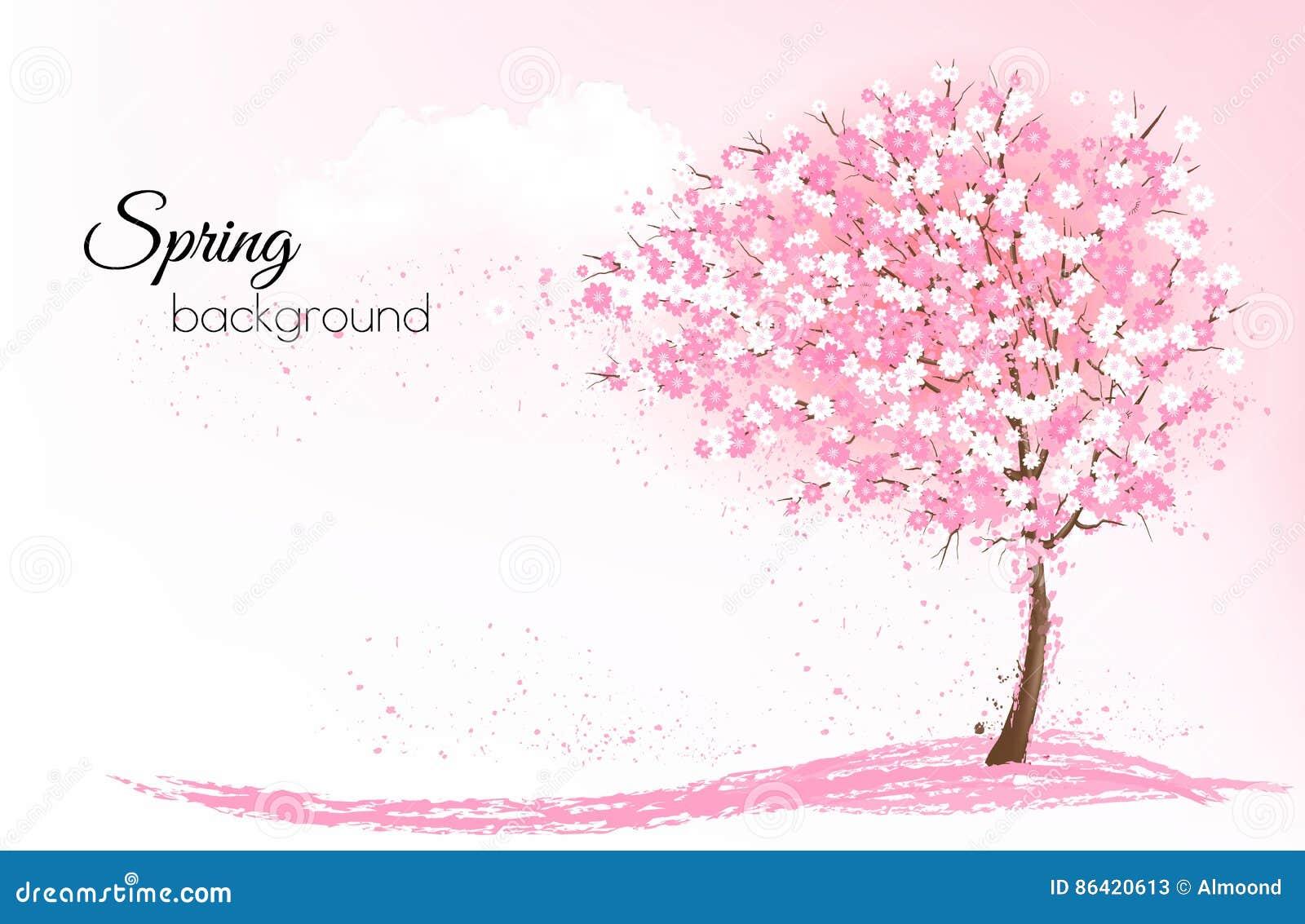 Fjädra naturbakgrund med ett rosa blommande sakura träd