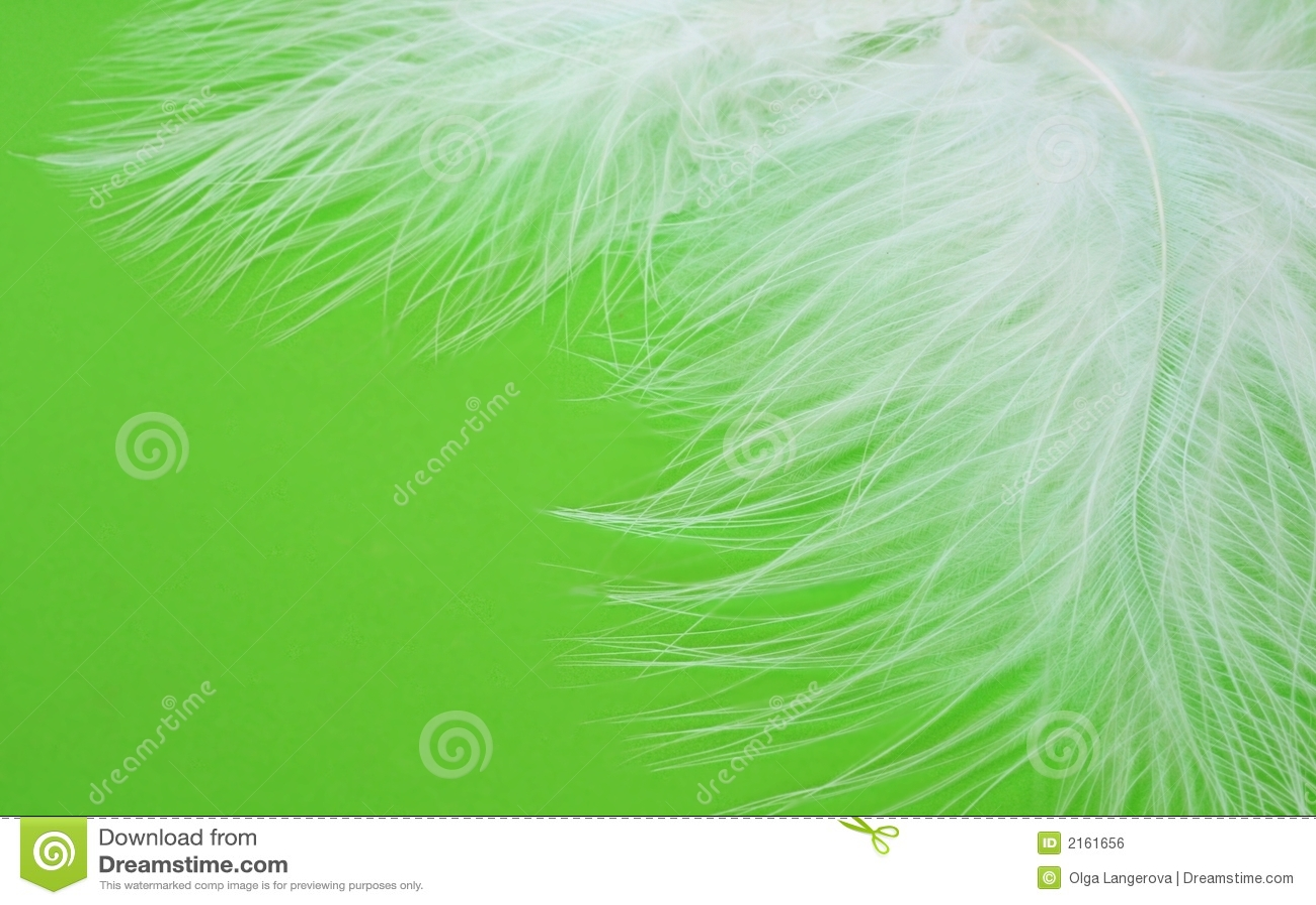 Fjädrar