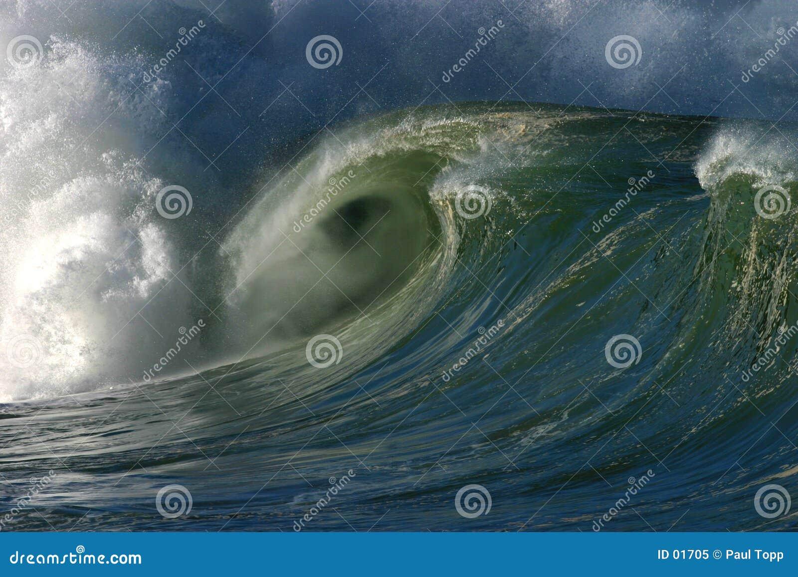 Fjärd som bryter waven för hawaii havwaimea