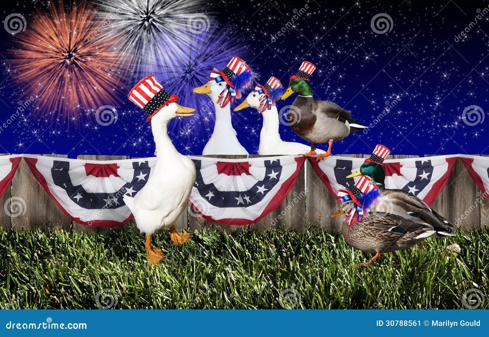Fjärde Juli Duck Party