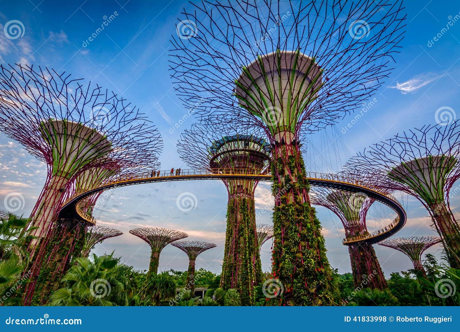 Fjärden arbeta i trädgården singapore