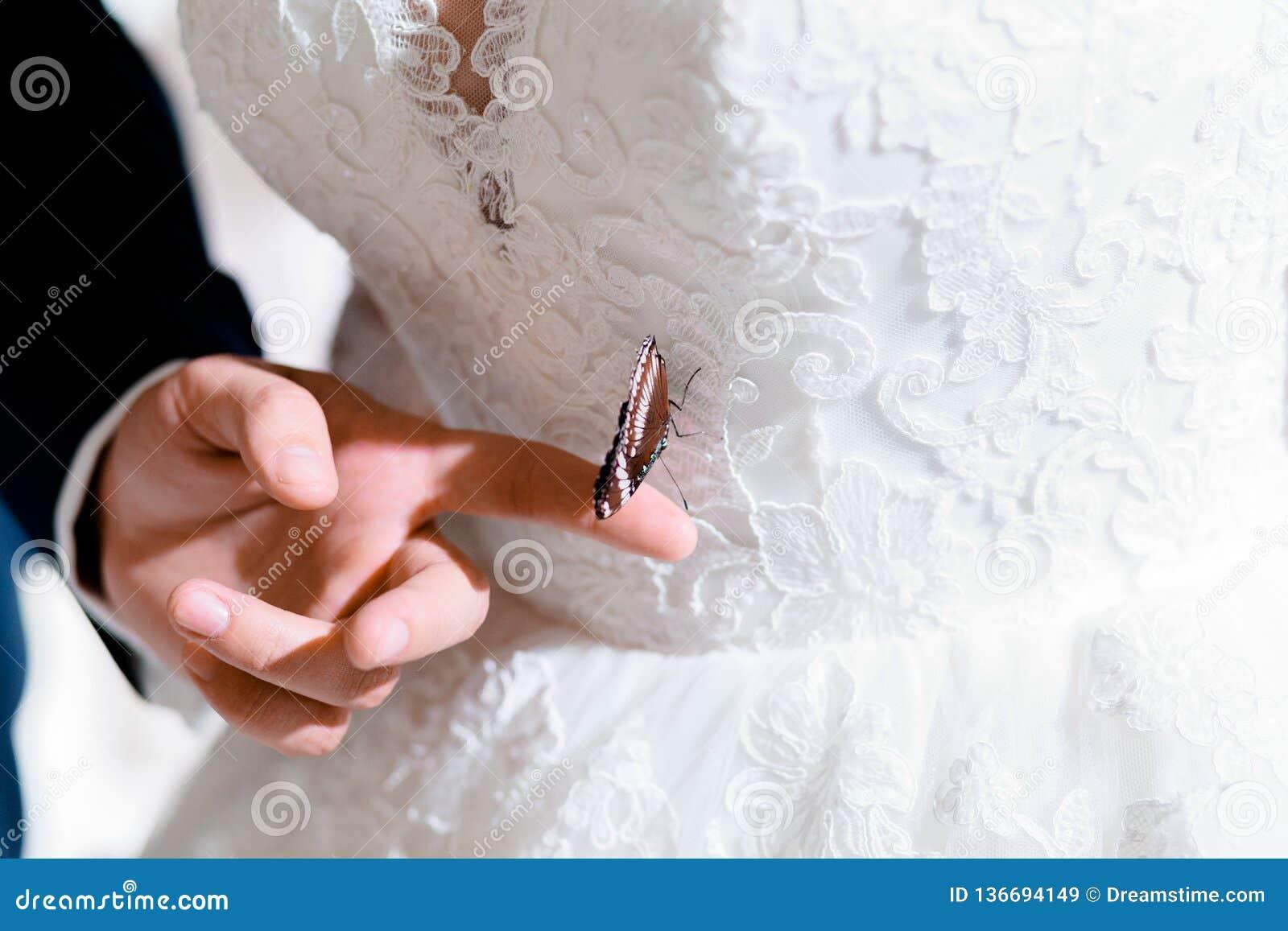 Fjäril på klänningen av bruden