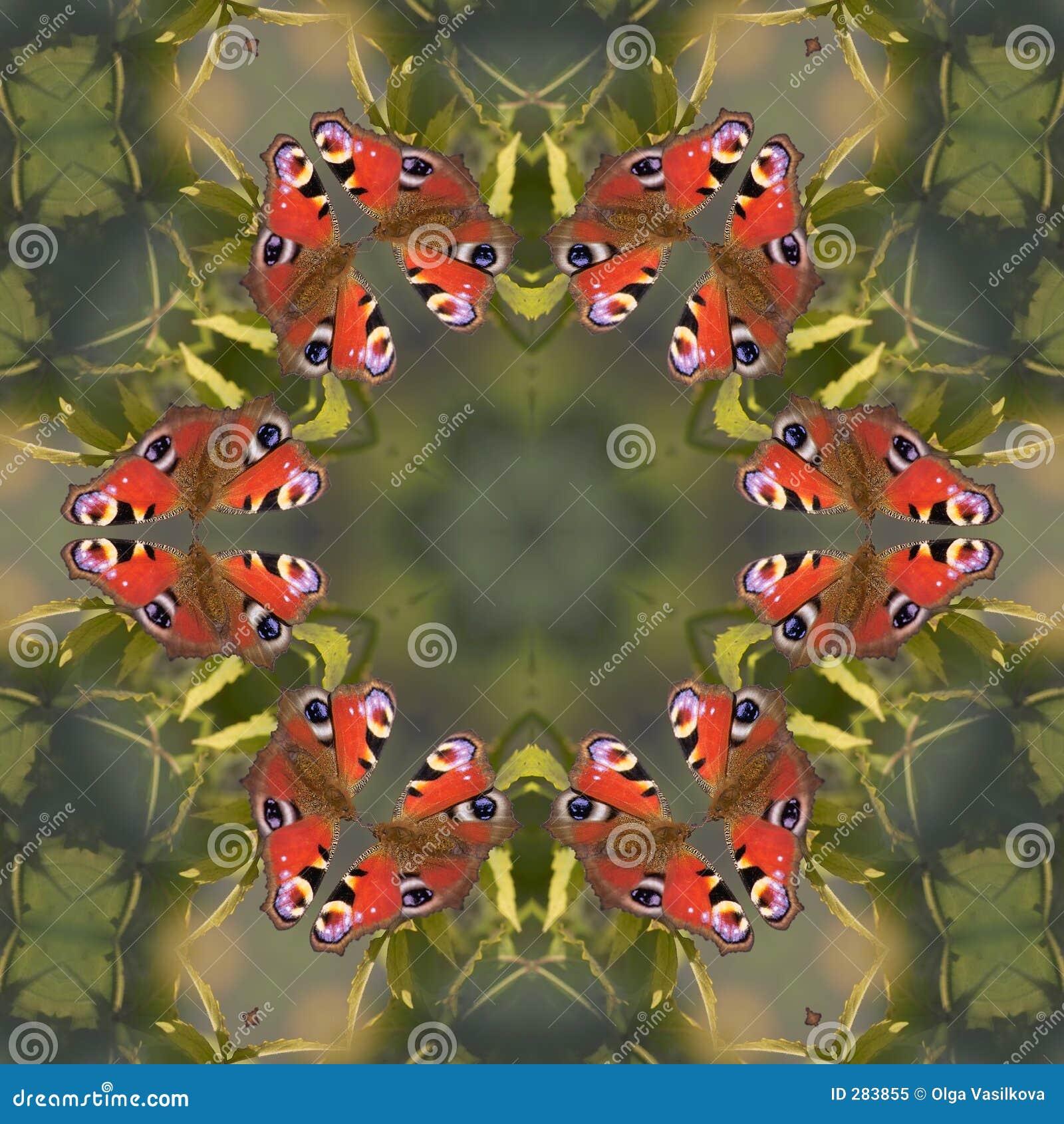 Fjärilsmandala