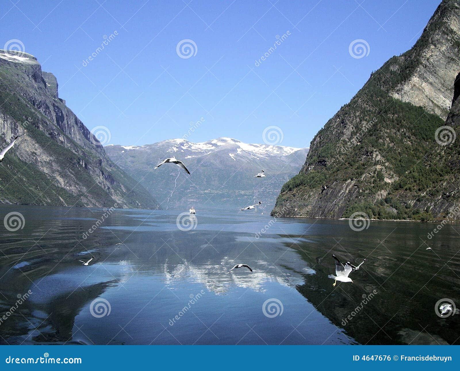 Fjord de Norvegian