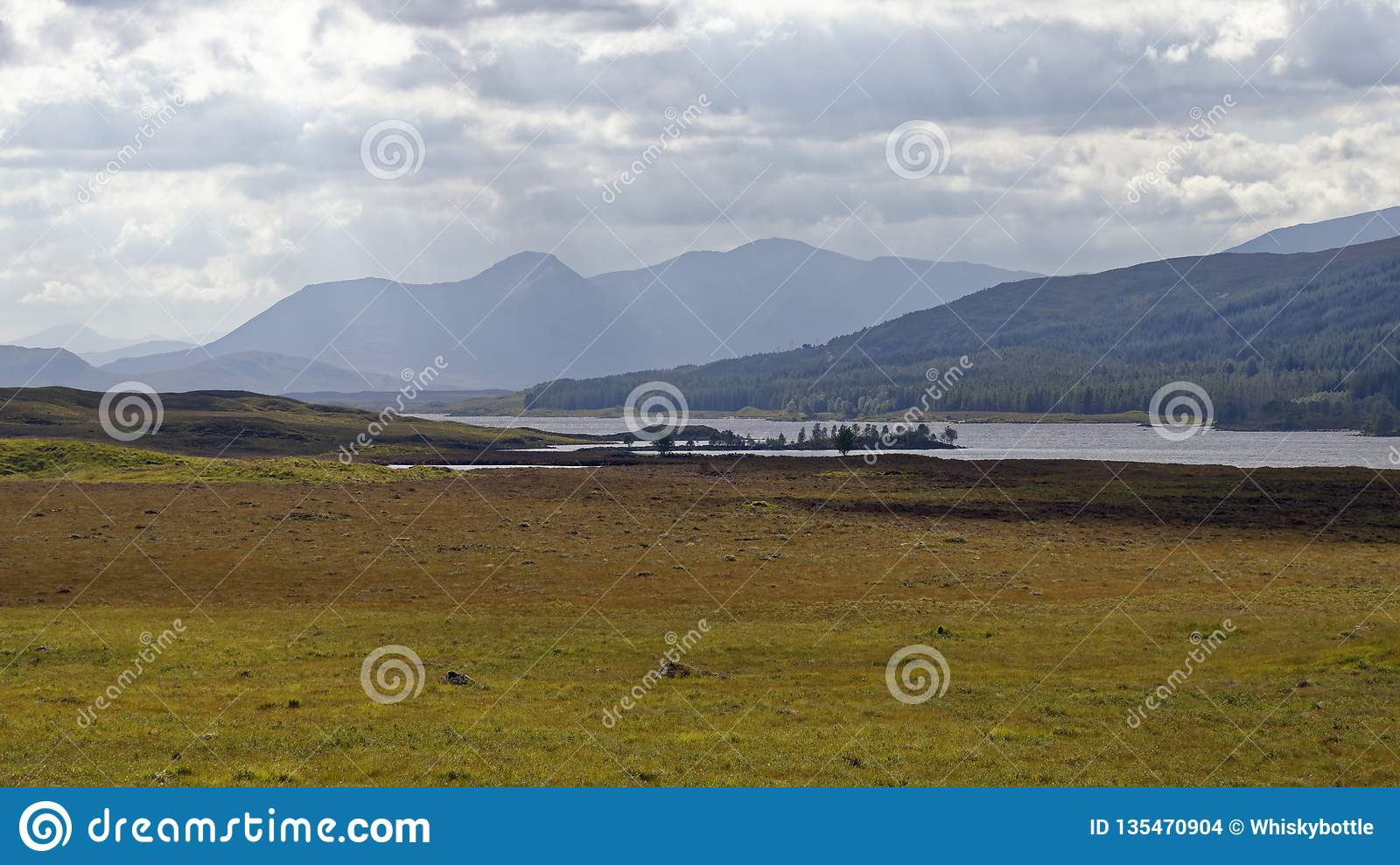 Fjord Laidon, Rannoch hed