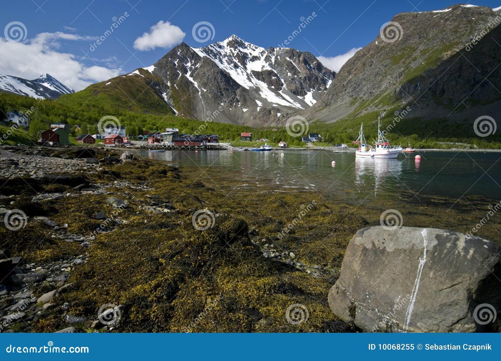 Fjord norueguês