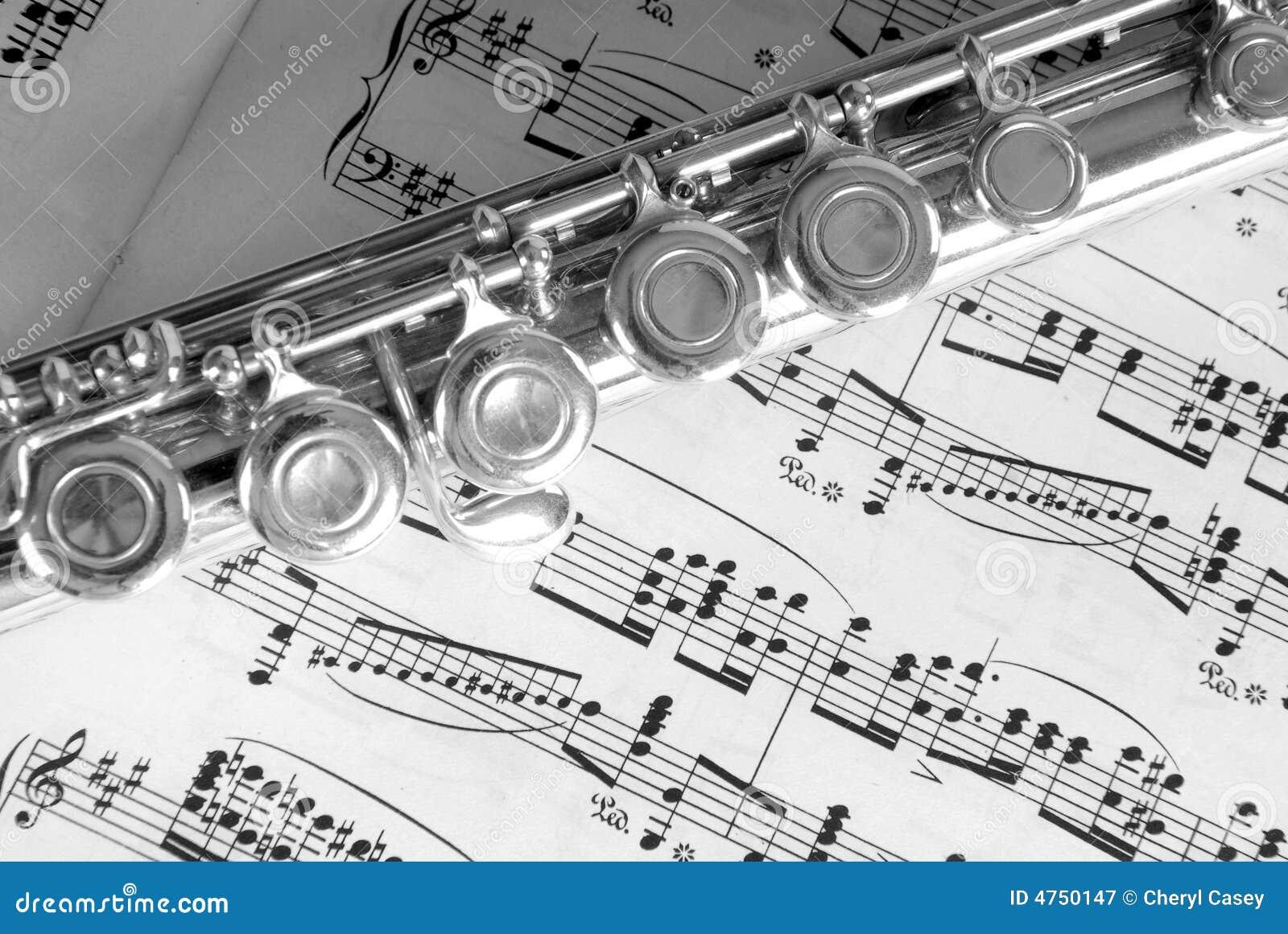 Flöjtmusikark