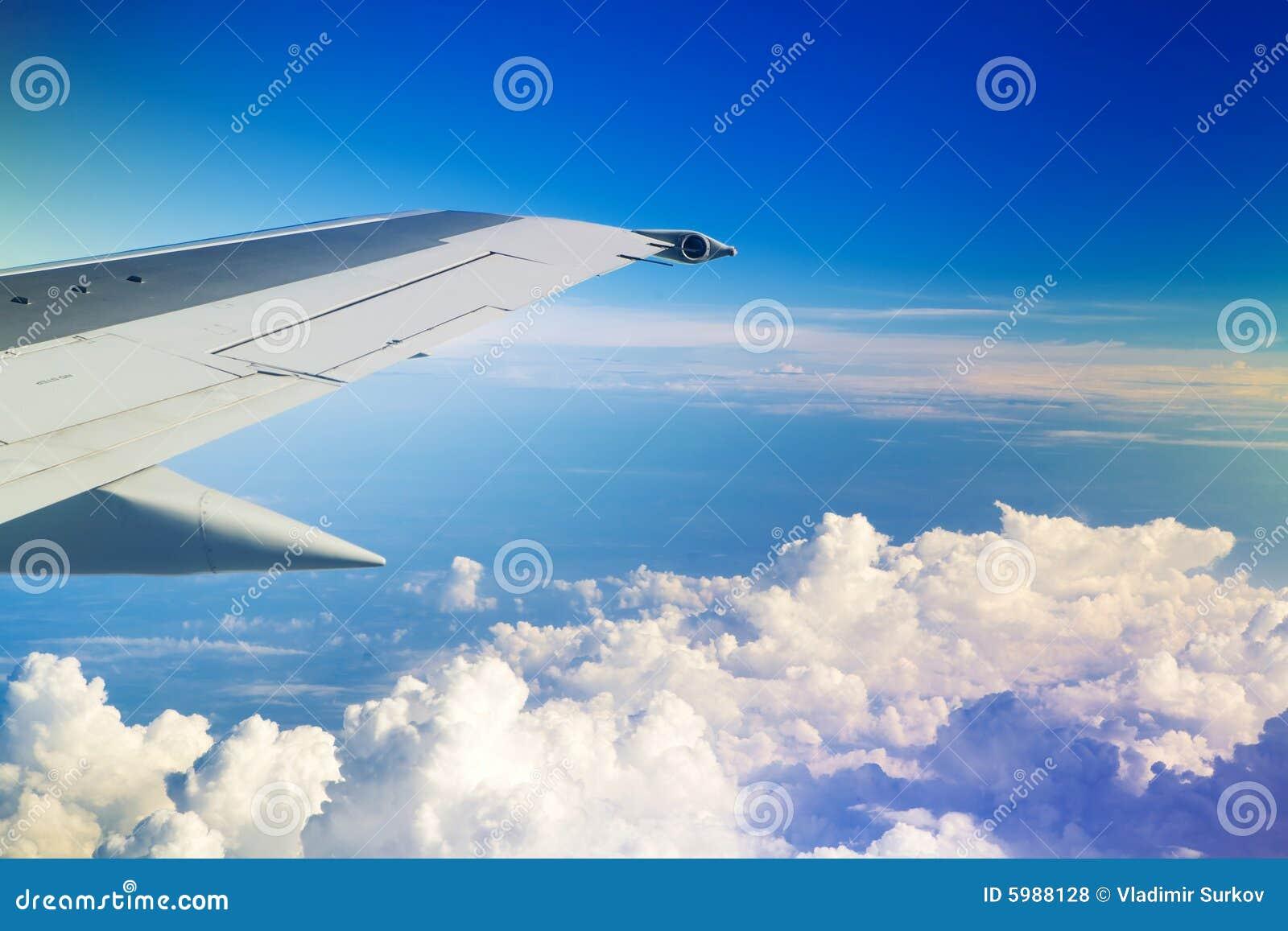 Flügel des Flugzeuges