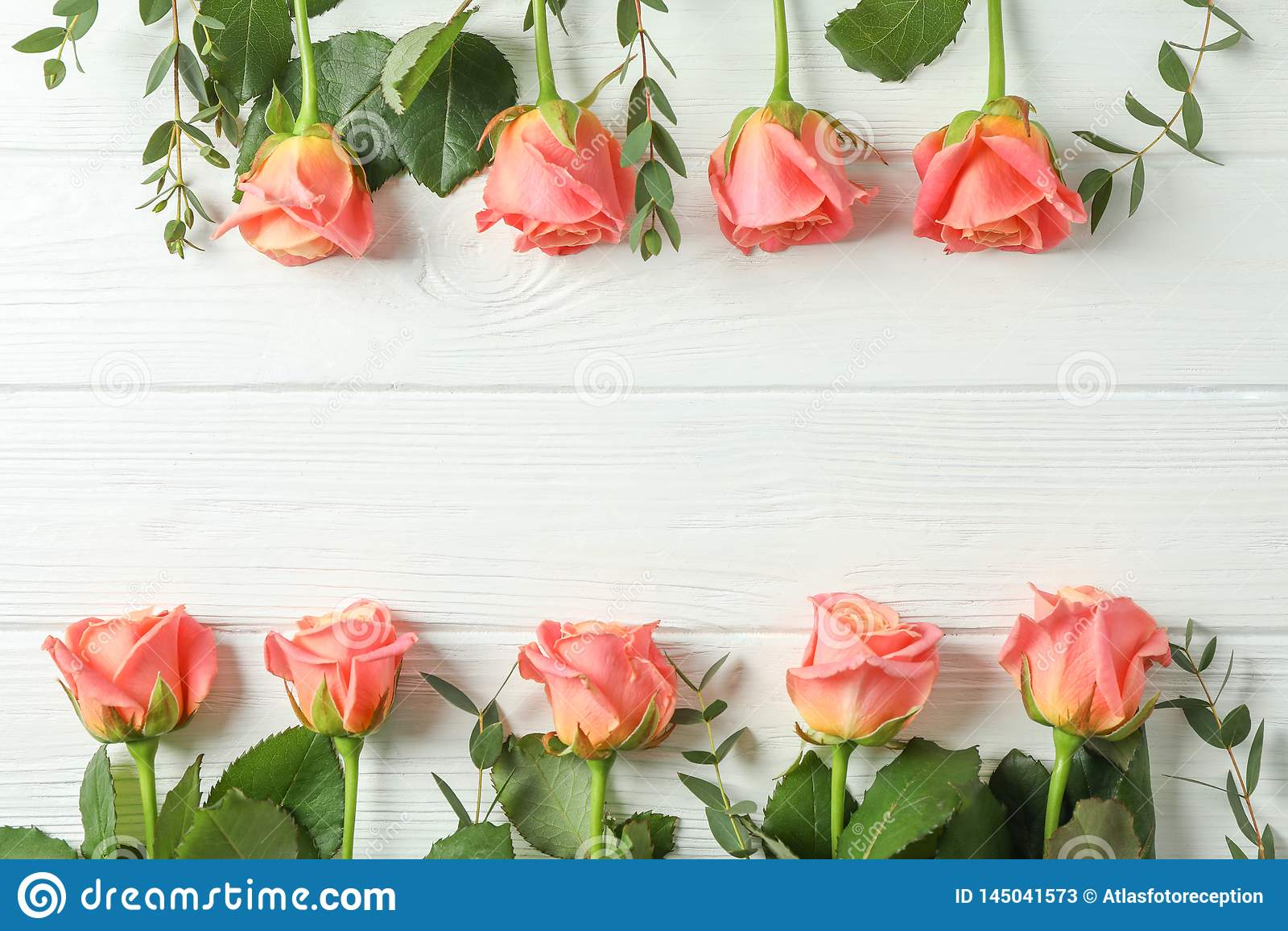 Flache gelegte Zusammensetzung mit rosa Rosen und Raum für Text