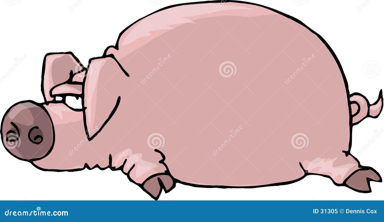 Flaches Schwein