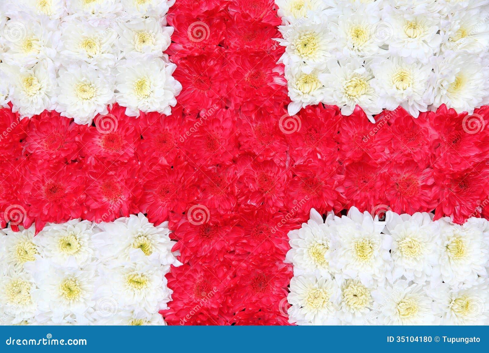 Flag Of England Stock Photo Image Of England Flag English 35104180
