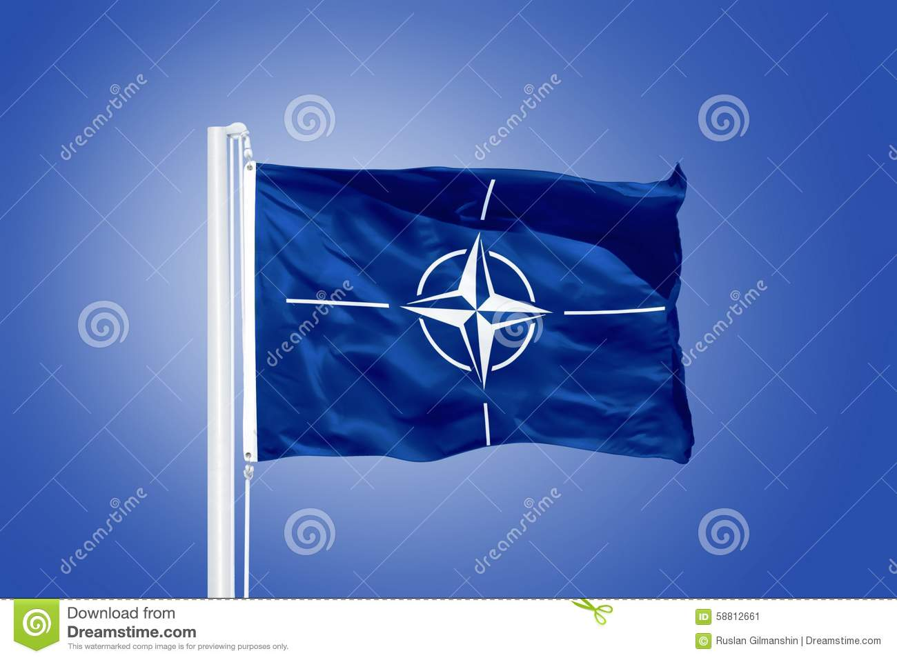 a history of the north atlantic treaty organization Following world war ii, the organization known as the north atlantic treaty organization was formed because anti-communist.