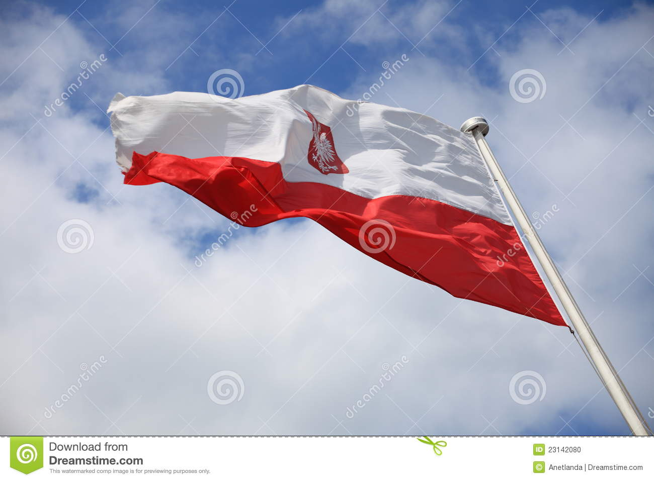 flag of poland royalty free stock photo image 26313615