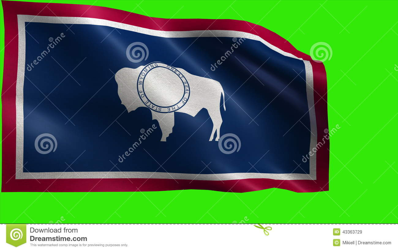 Flag Of Wyoming Wy Cheyenne July 10 1890 State Of The United