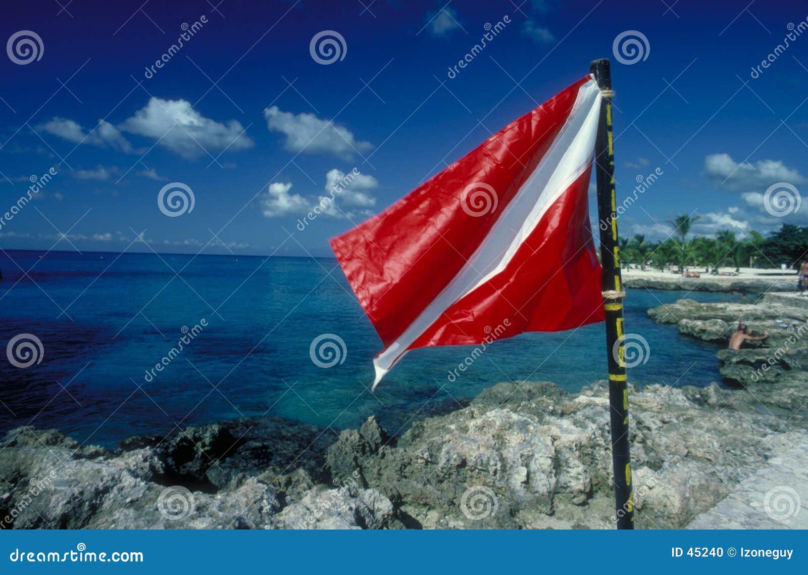 Flaga akwalung