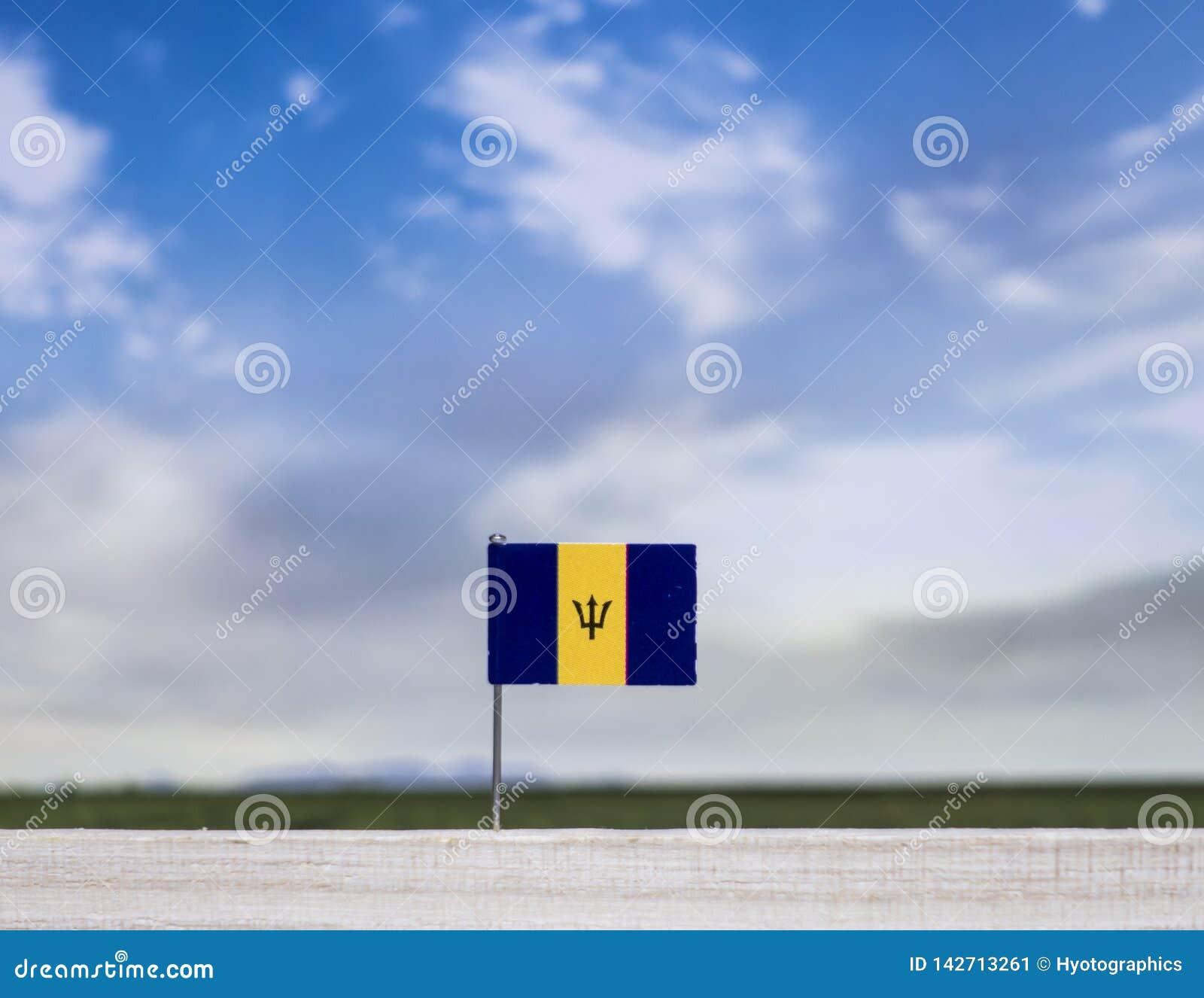 Flaga Barbados z szeroką łąką i niebieskim niebem za nim