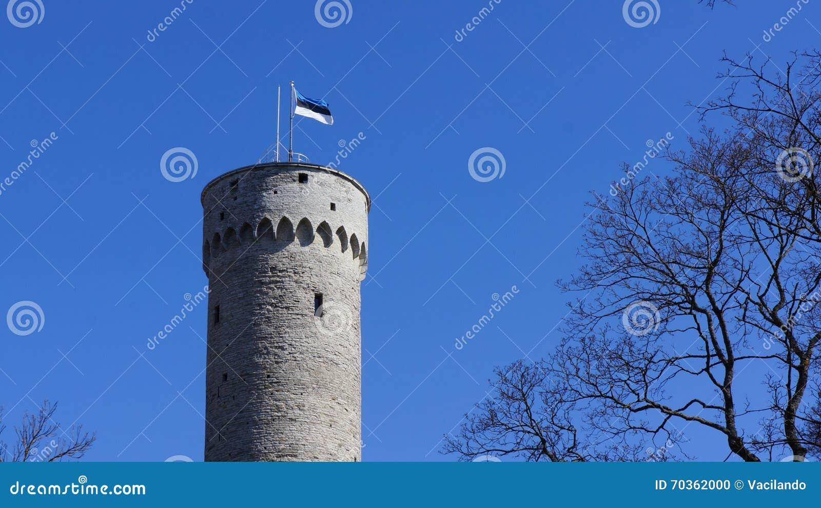 Flaga Estonia na Masywny stary historyczny wierza w Tallinn