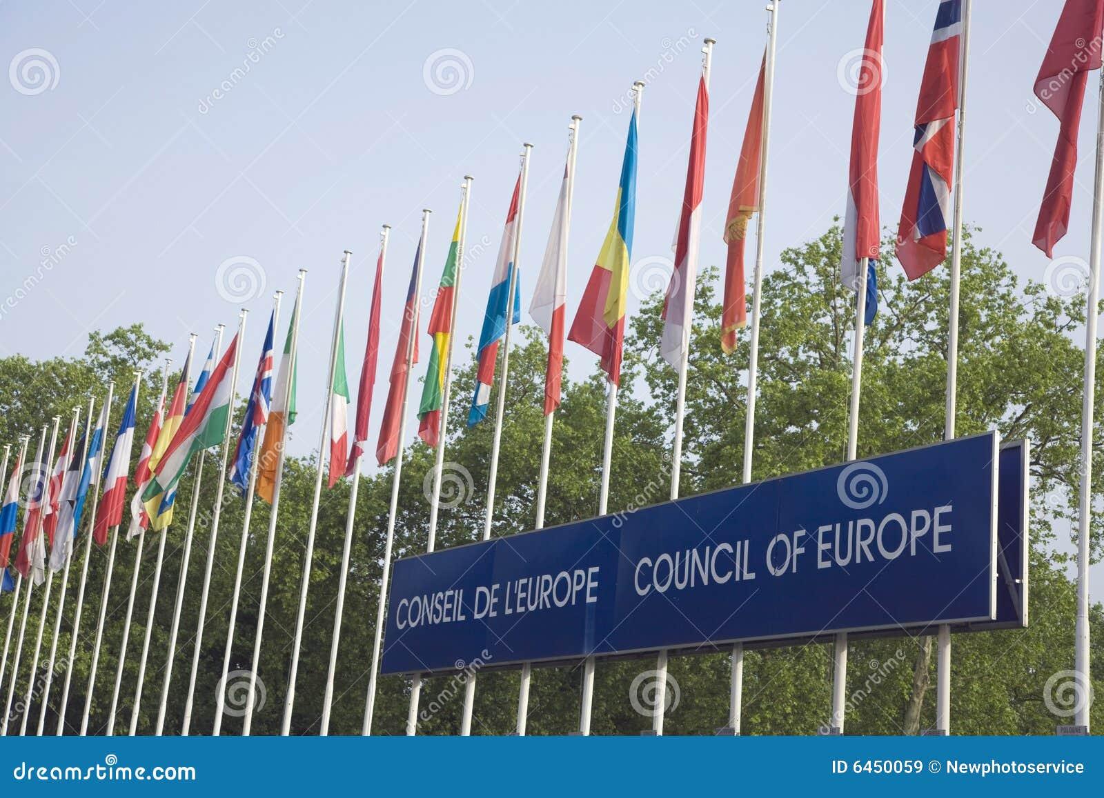 Flaga euro