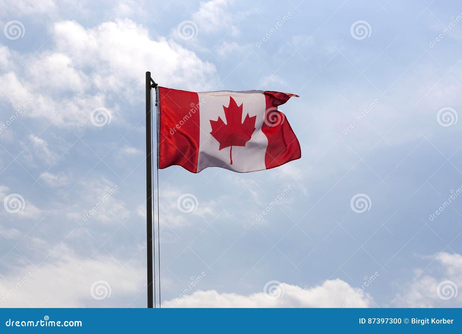 Flaga państowowa Kanada na flagpole