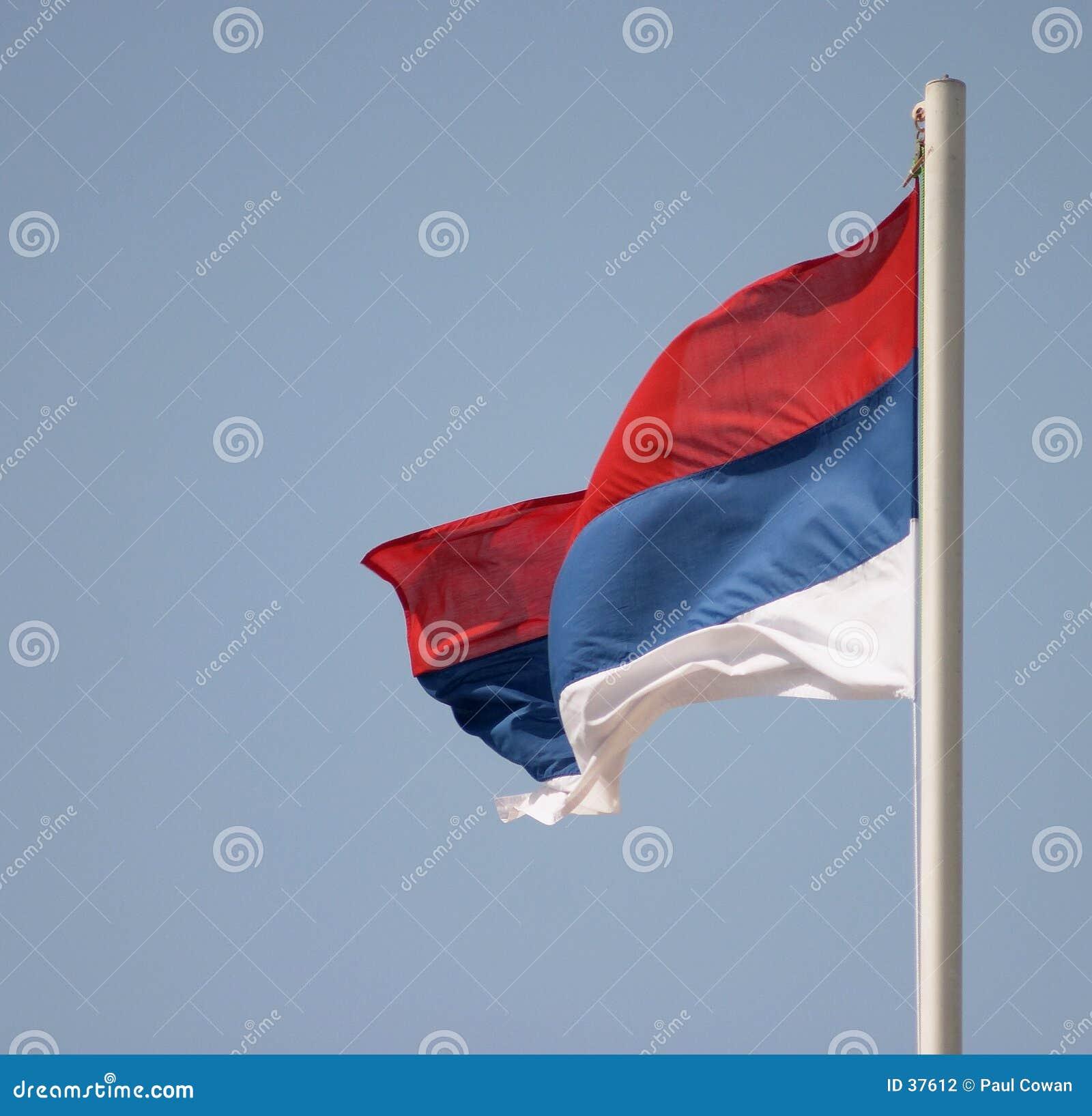 Flaga serbskiego