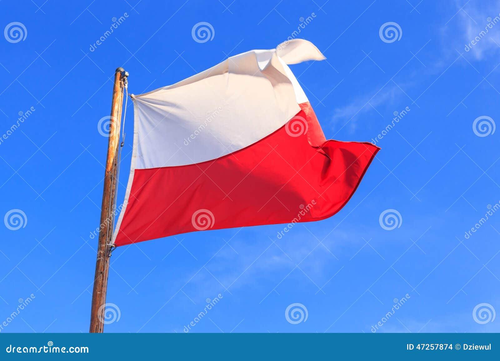 Flaga shine