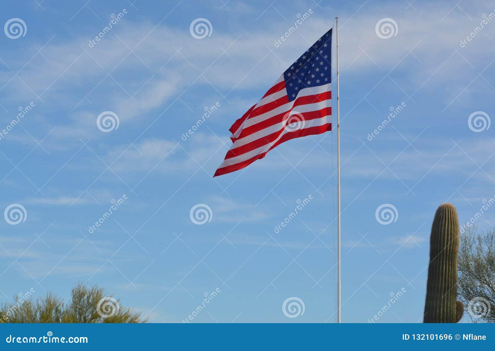 Flagge Vereinigter Staaten nahe bei einem Saguarokaktus, Höhlen-Nebenfluss, Maricopa County, Arizona, USA