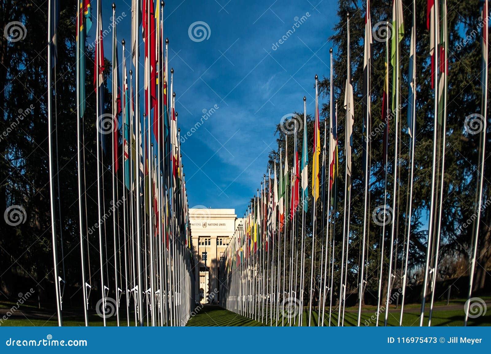 Flaggor framme av Förenta Nationerna som bygger i Genève Schweiz