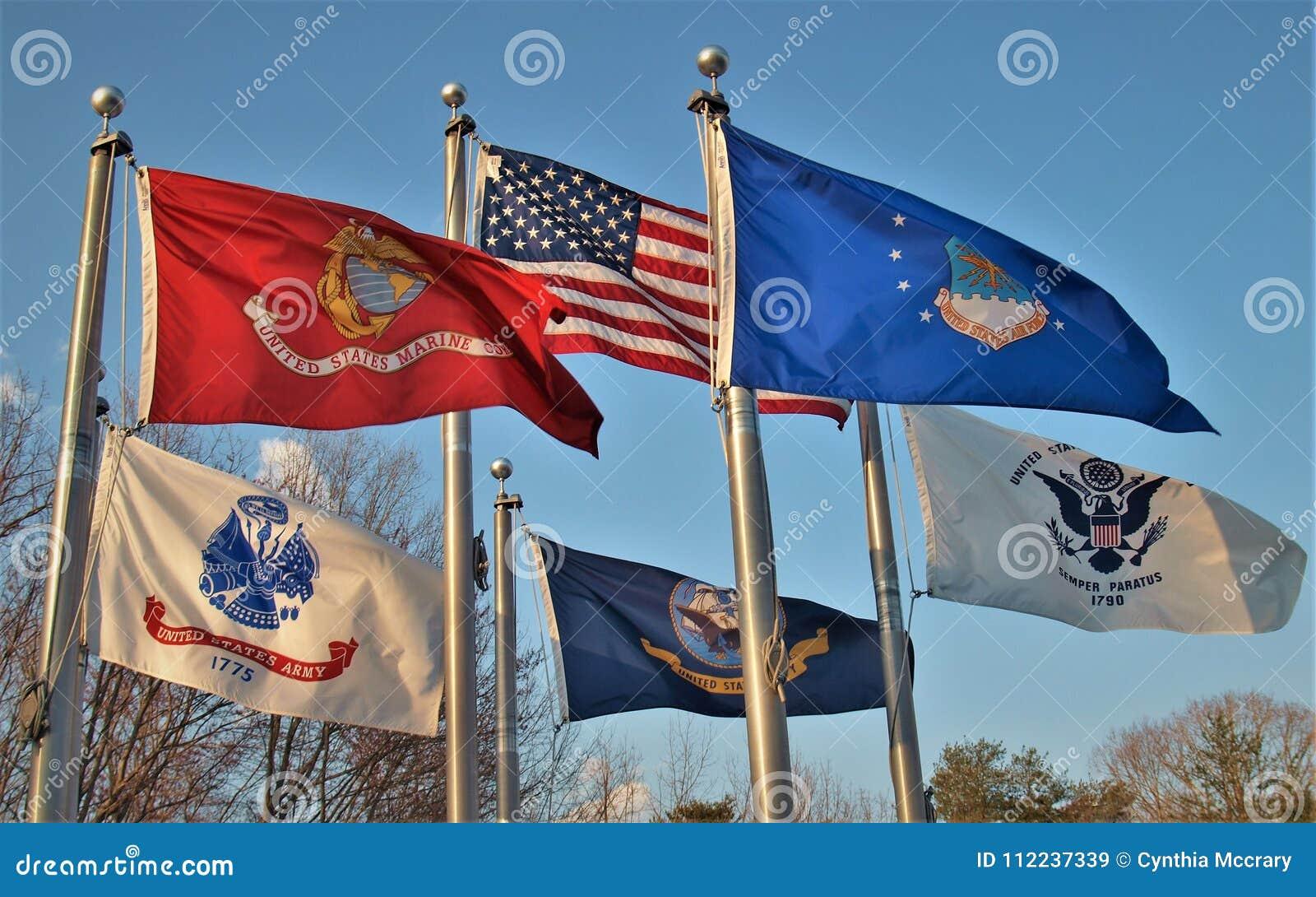 Flags over Veterans Memorial in King, North Carolina