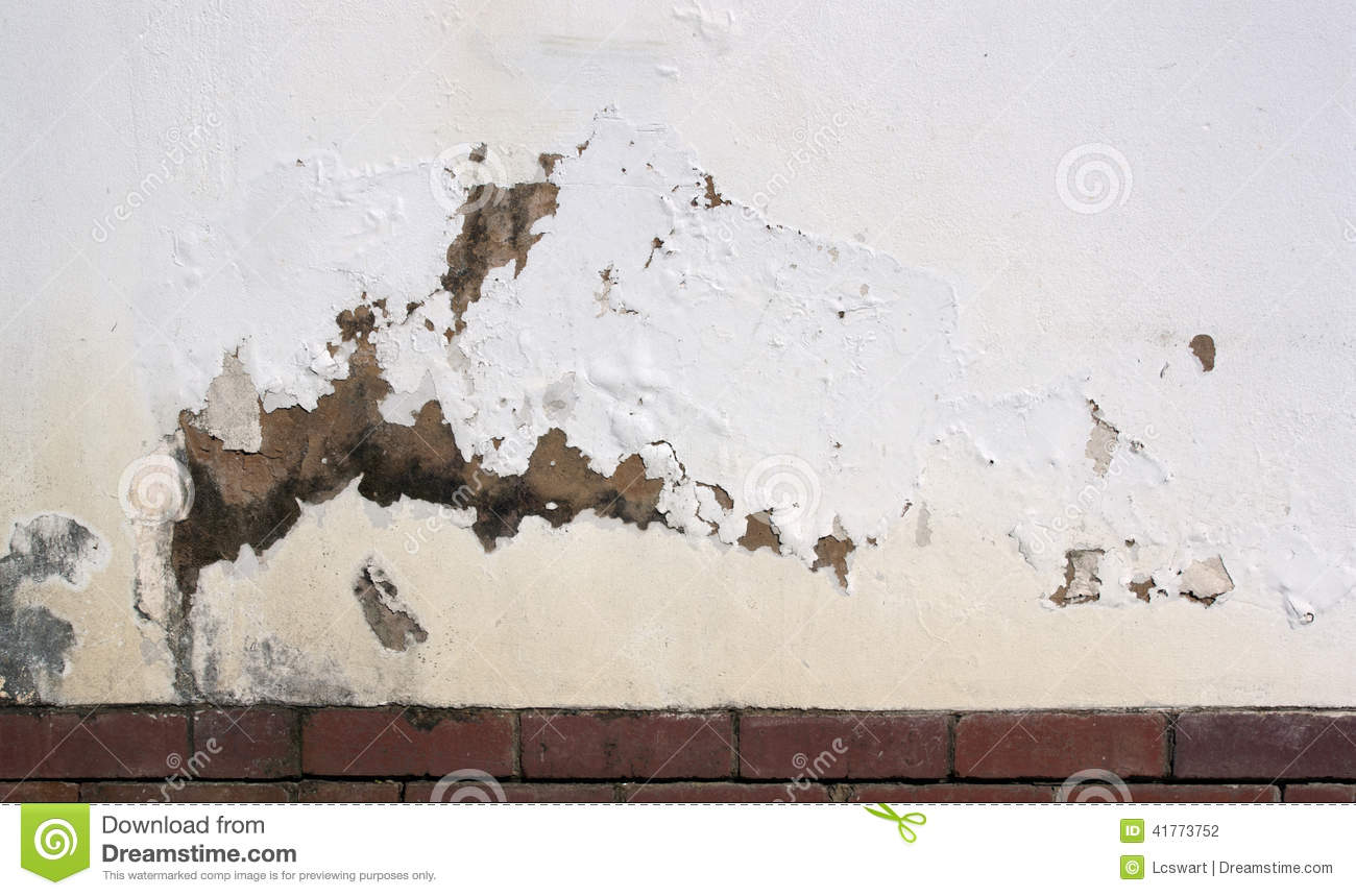 Flaking Paint On Exterior Wall Indicating Rising D Stock Photo Image 41773752