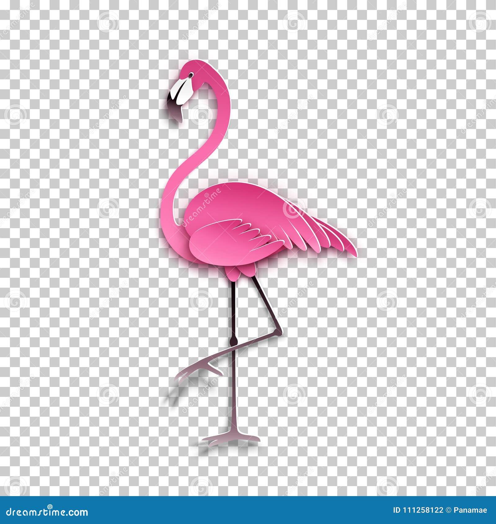 Flamant Rose Se Tenant Sur Une Jambe Oiseau Exotique Africain