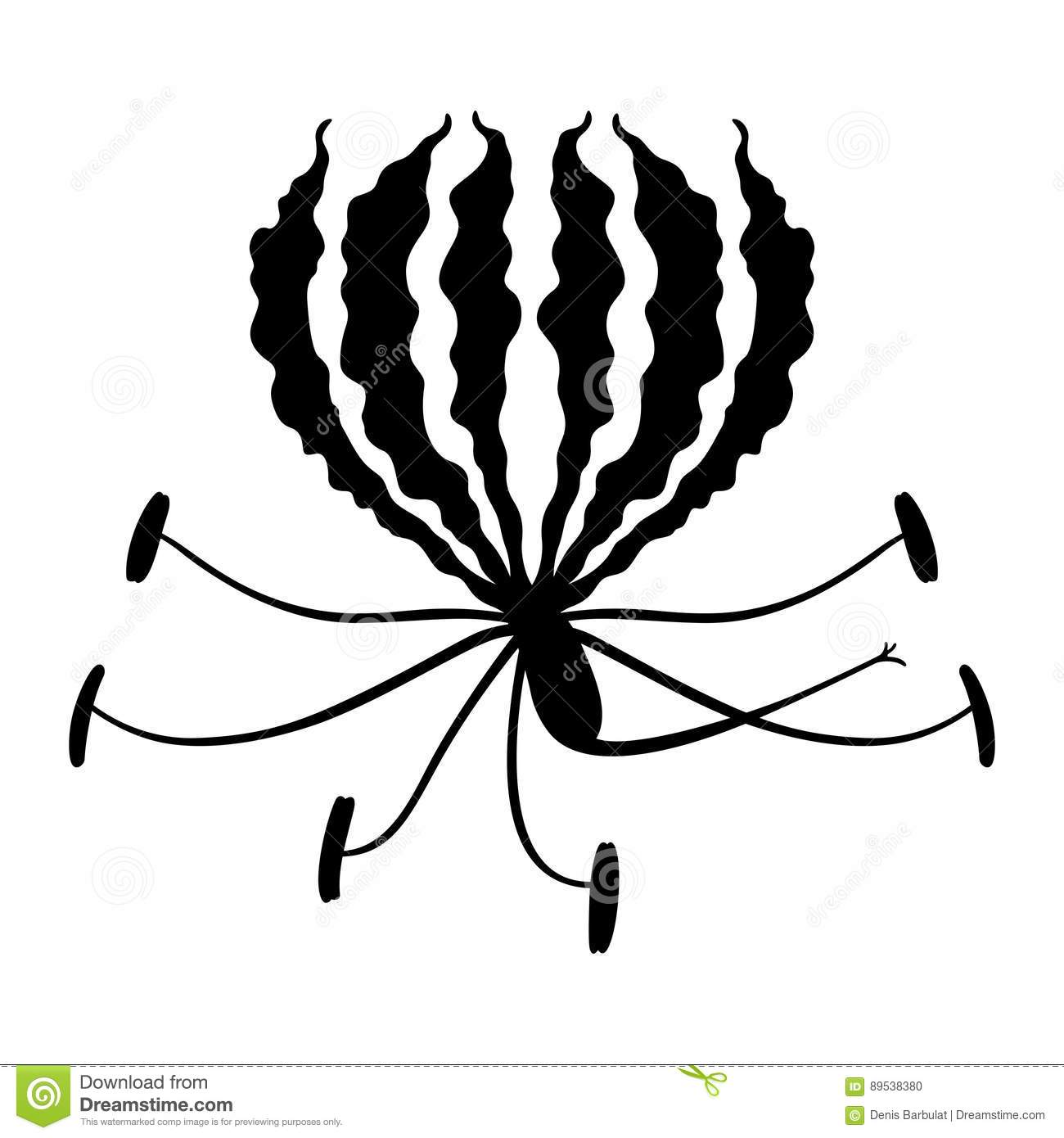 Flame Lily Stock Vector Illustration Of Icon Flower 89538380