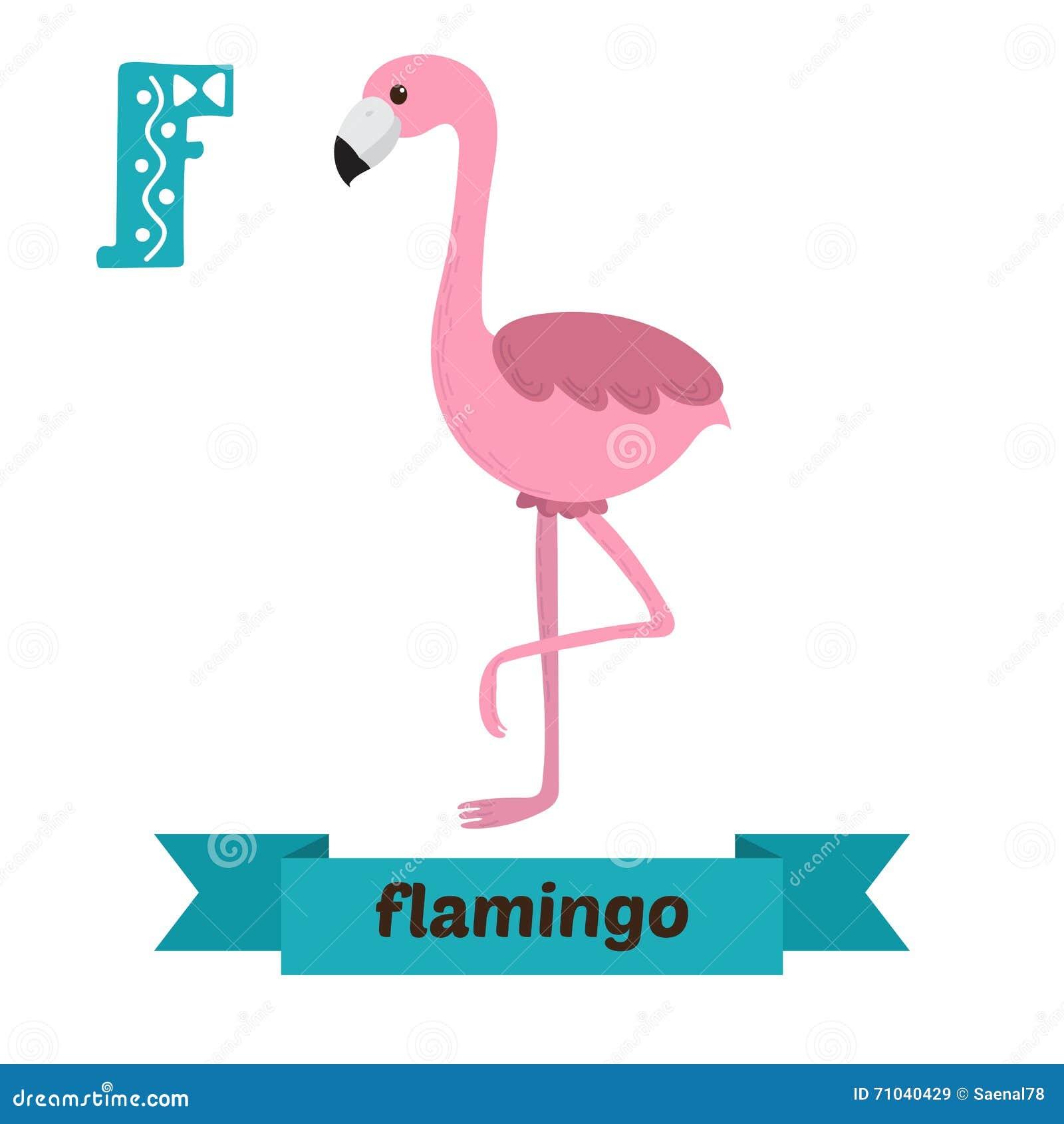 Fabuleux Flamenco Letra De F Alfabeto Animal De Los Niños Lindos En Vector  SL99