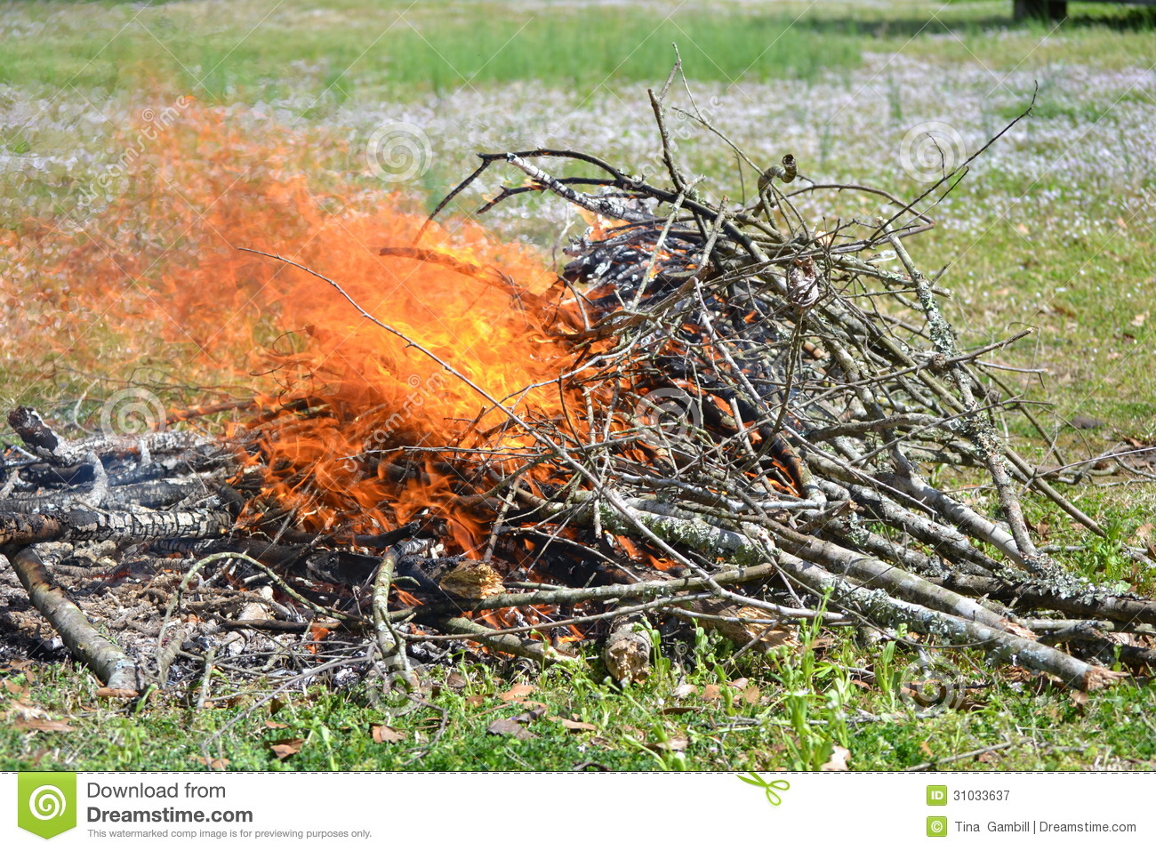 how to clear brush from land