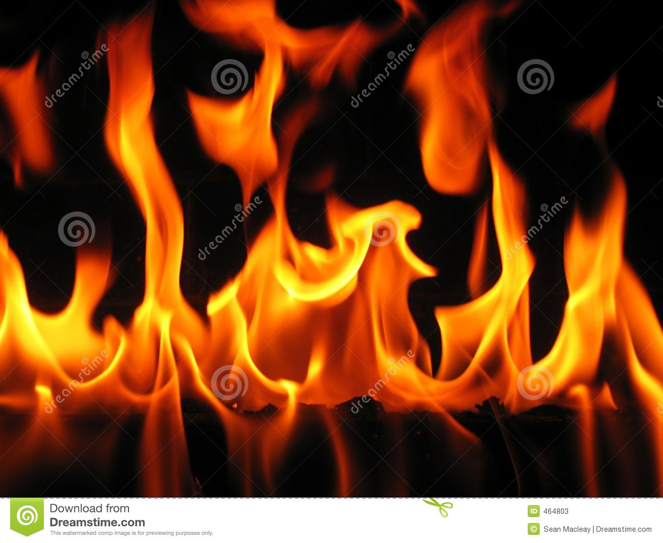 Flames coming from a log