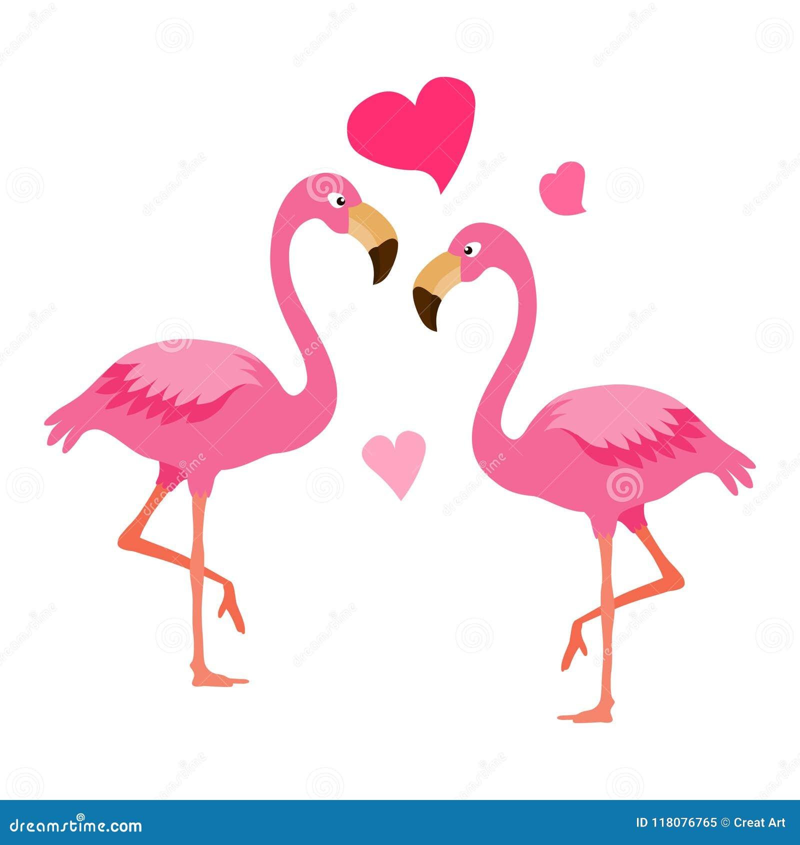Flaming para Egzotyczny ptasi ilustracyjny wektor Ptasia para