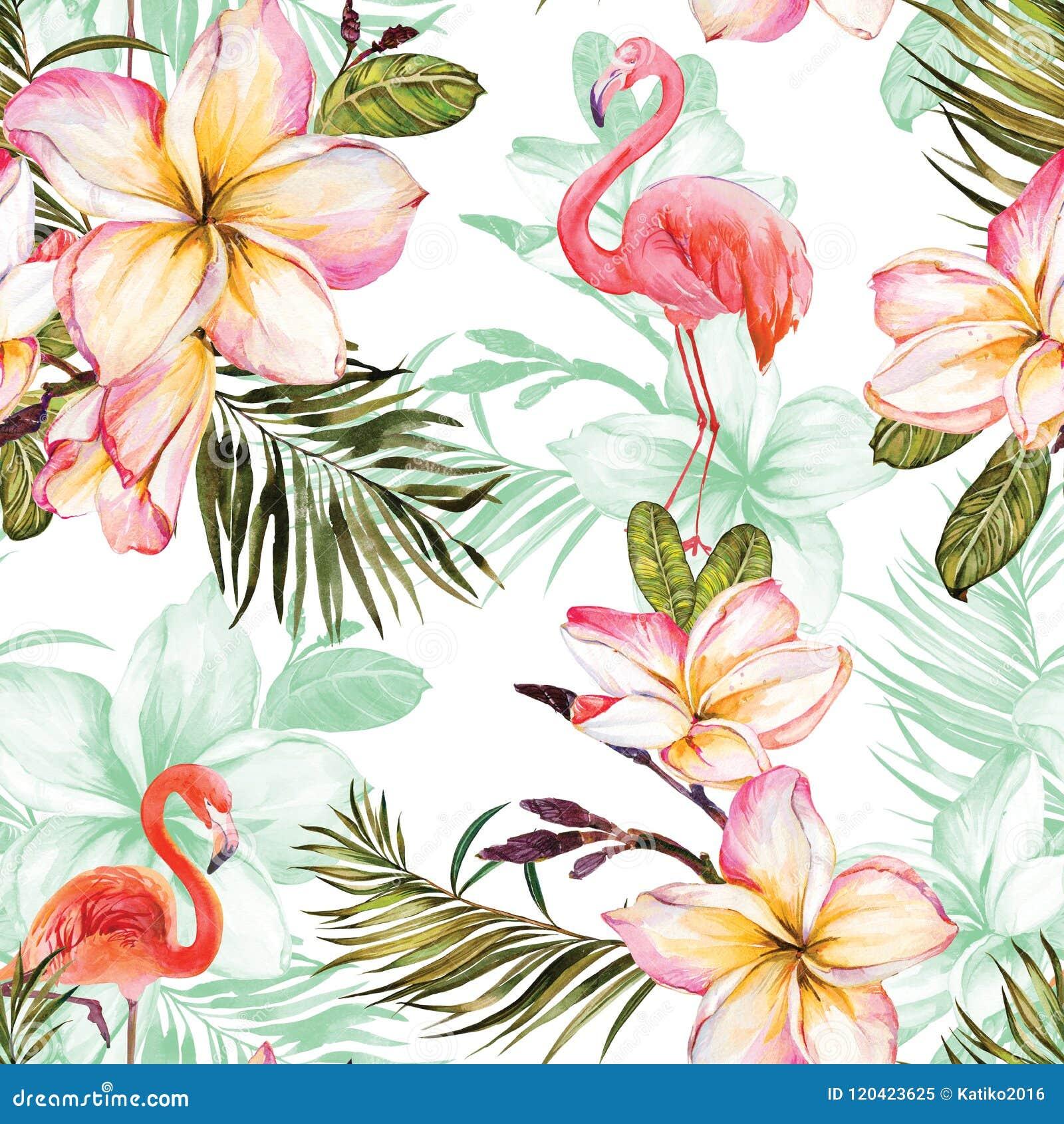 Flamingo bonito e flores cor-de-rosa do plumeria no fundo branco Teste padrão sem emenda tropical exótico Pintura de Watecolor