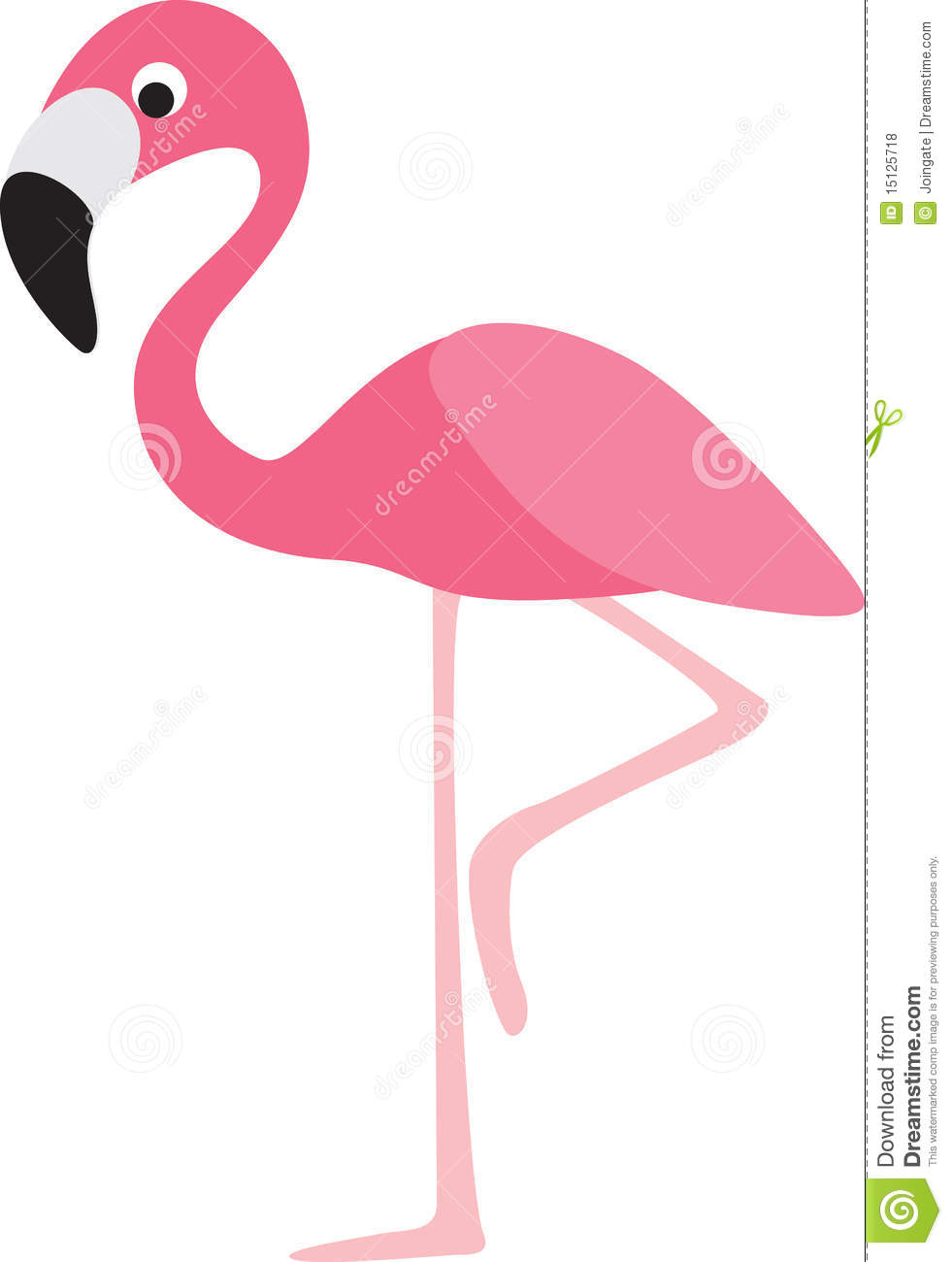 Flamingo modern colour cartoon character on white background.