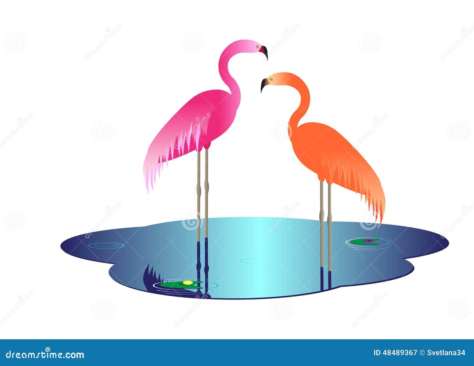 flamingo beak template - flamingo stock vector image of backdrop beauty beak